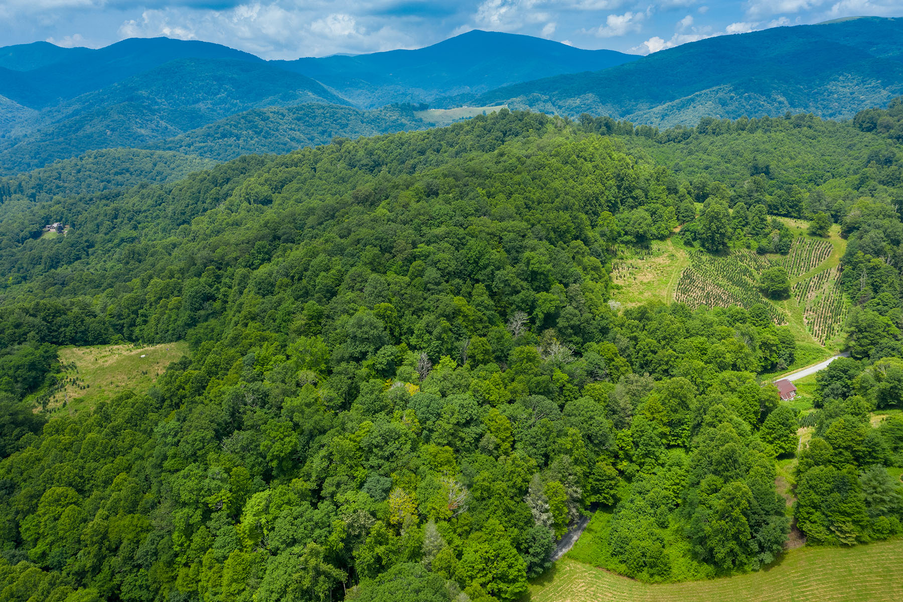 Land for Active at NEWLAND 188 Staples Johnson Rd Newland, North Carolina 28657 United States