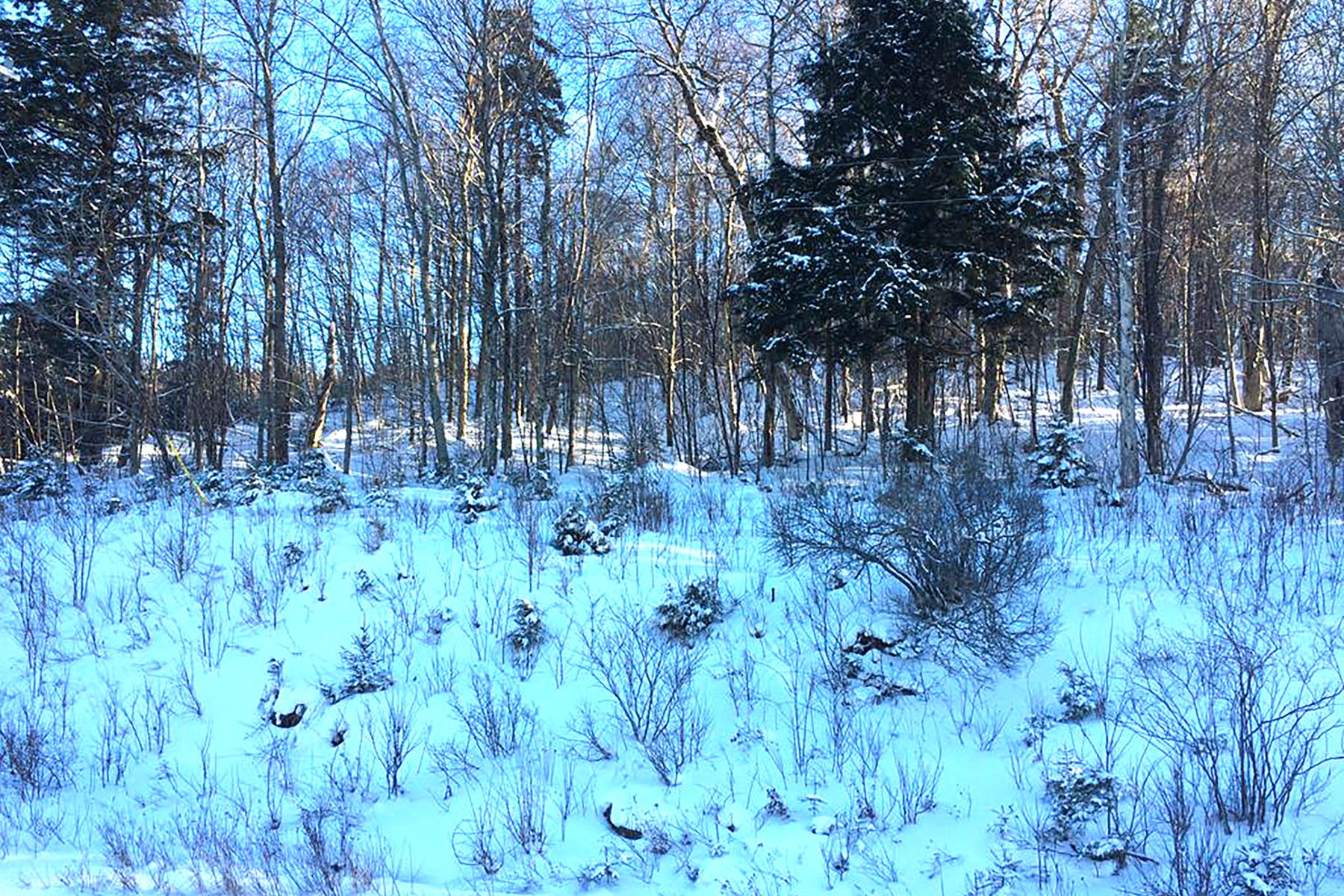 Land for Active at State Route 28 Building Lot 00 State Route 28 Thendara, New York 13472 United States
