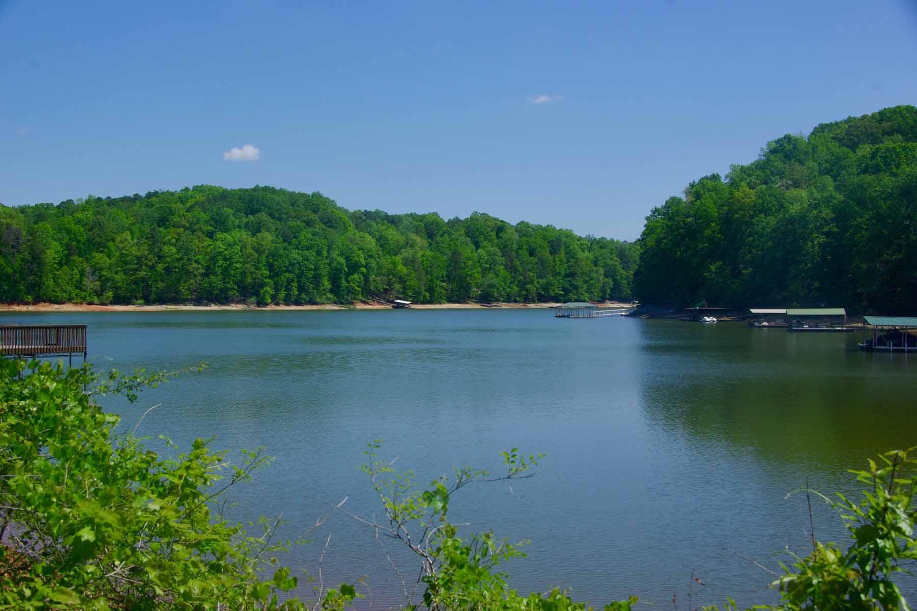 土地 のために 売買 アット A lakeside lot...build your home. 238 Waters Edge Court Martin, ジョージア 30557 アメリカ合衆国