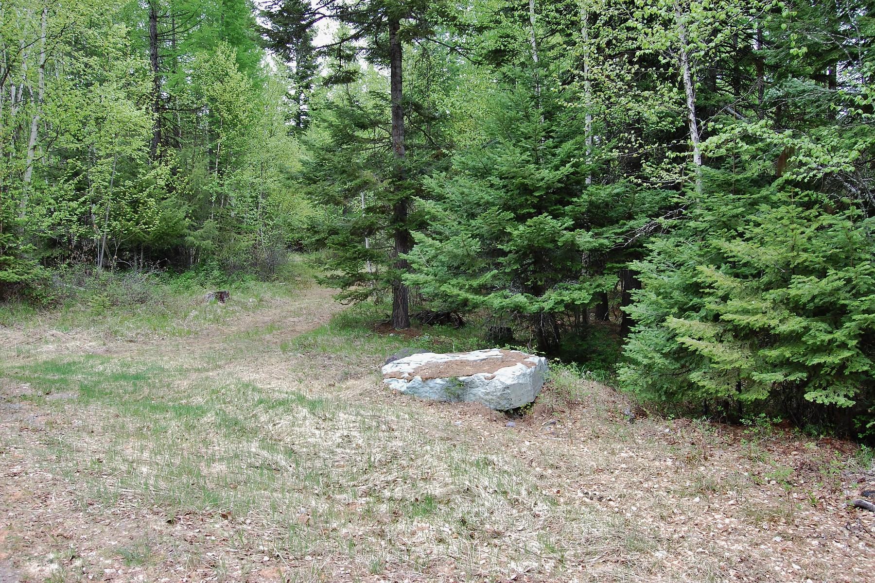 Additional photo for property listing at nhn Big Hawk Drive, Lot 10, Bigfork, MT 59911 Lot 10  Wapiti Dr Lot 10 Bigfork, Montana 59911 United States
