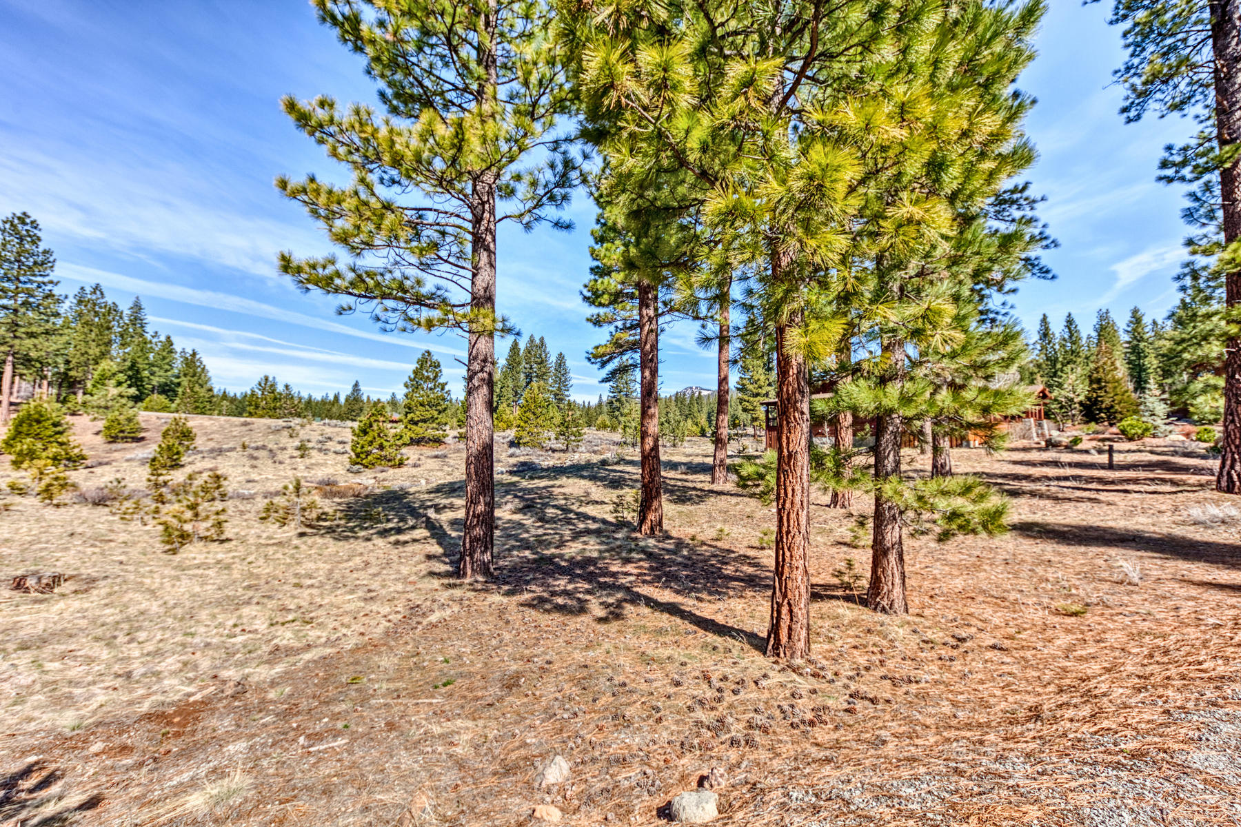 Additional photo for property listing at 56 Blacktail Pointe, Portola, CA 96122 56 Blacktail Pointe Portola, California 96122 United States