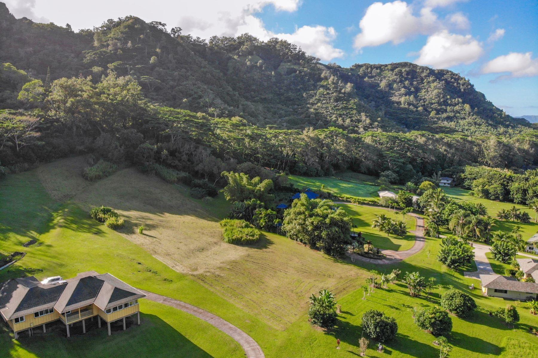 토지 용 매매 에 820 Kamalu Rd #C, Kapaa, 하와이 96746 미국