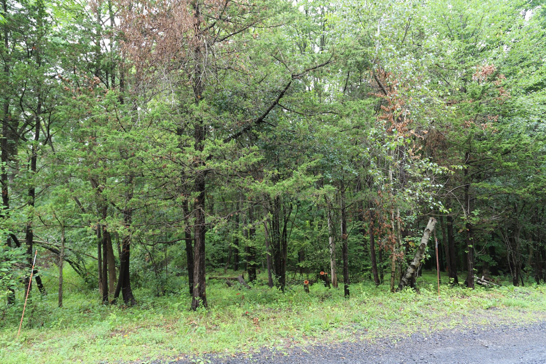 Land for Sale at Stone Creek 11 Cox Drive Warwick, New York 10950 United States