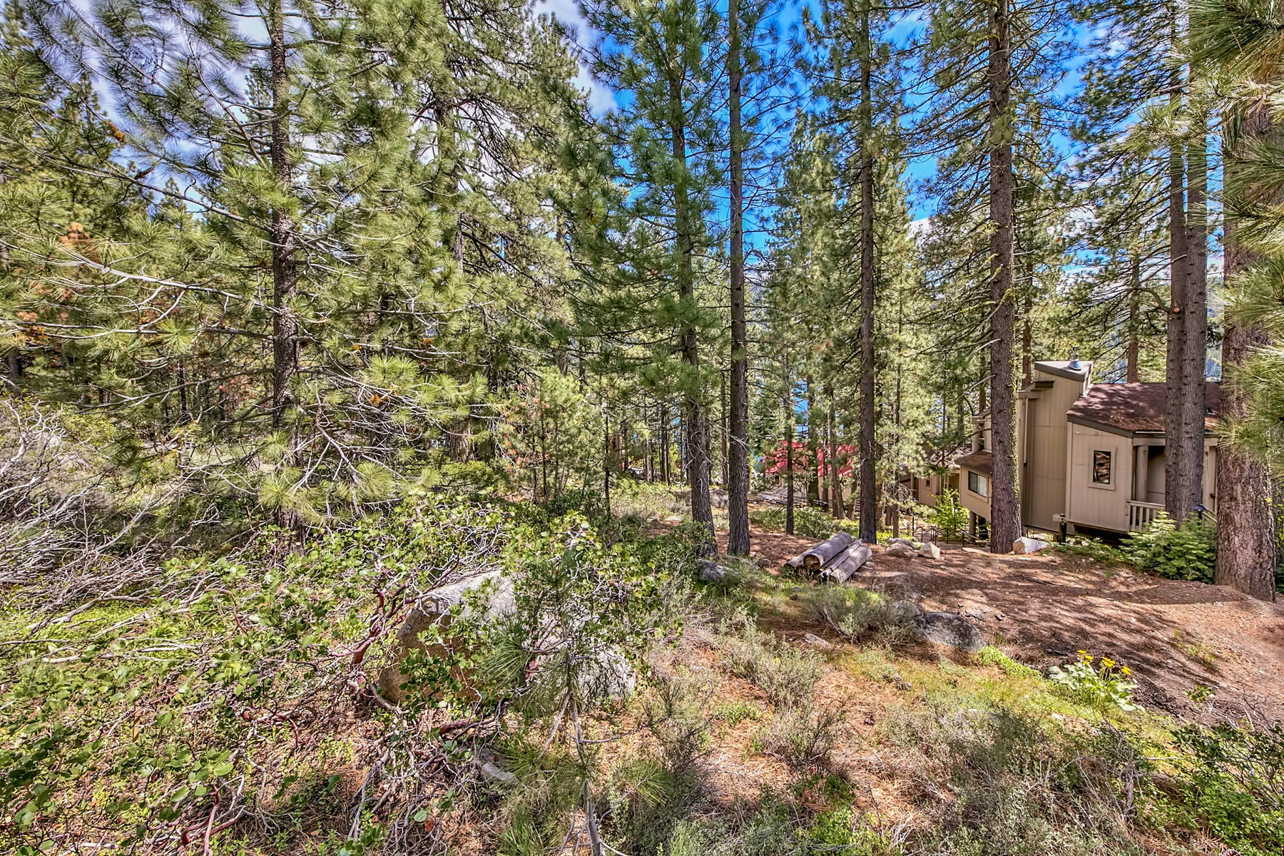 Additional photo for property listing at 10275 Donner Lake Road, Truckee, CA 10275 Donner Lake Road Truckee, California 96161 United States