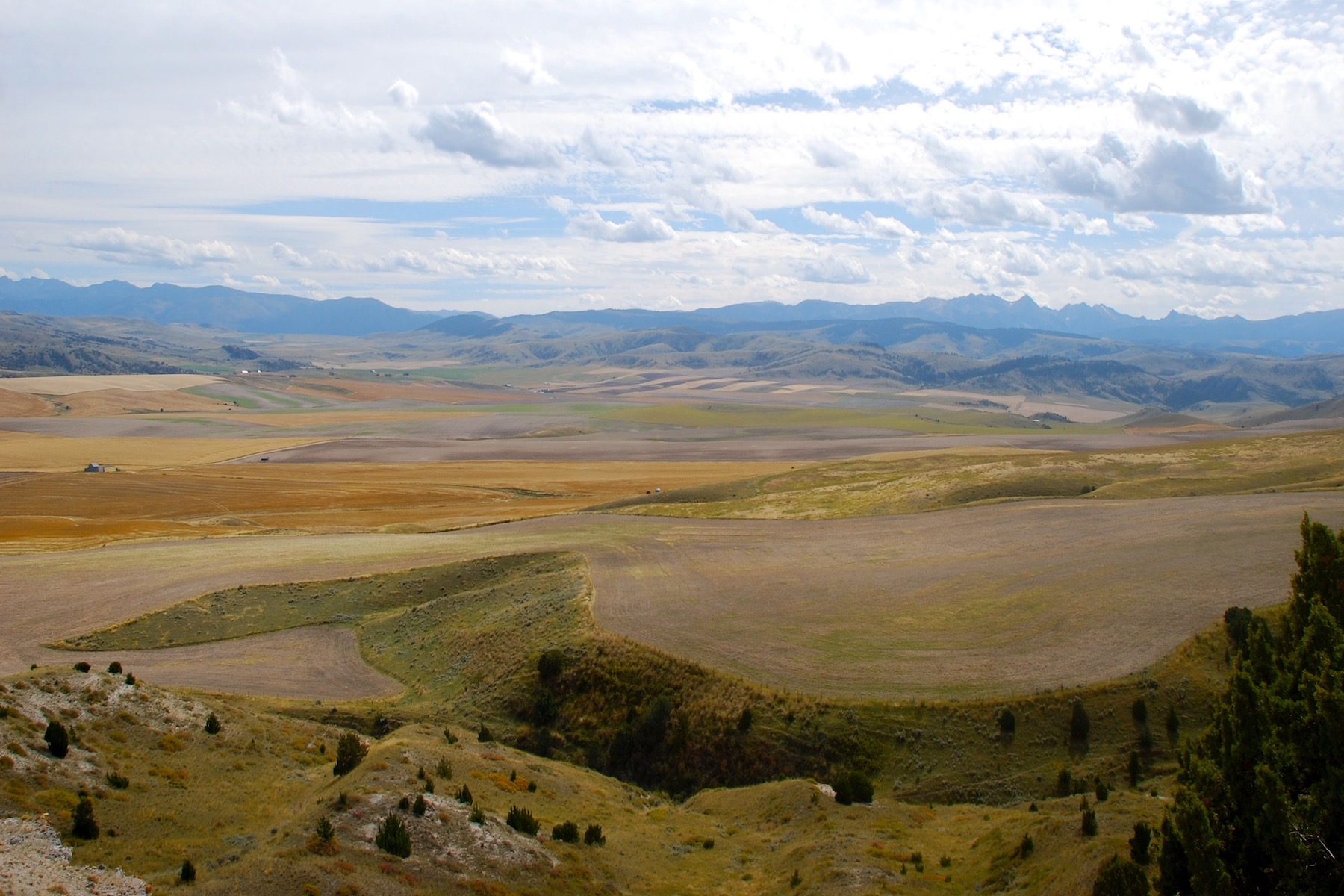 Land for Sale at Tract 4 Vincent Road Manhattan, Montana 59741 United States