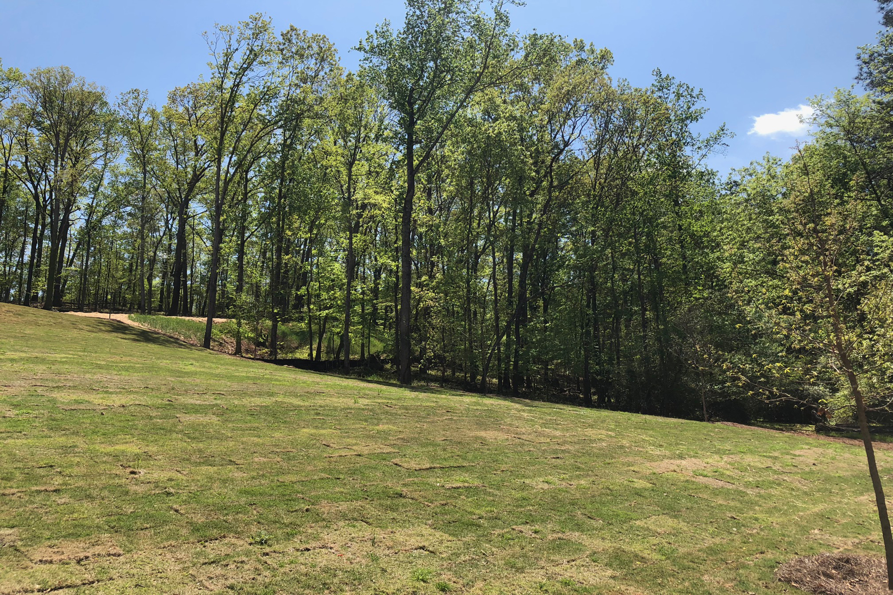 Land for Sale at Spalding Ridge Lot 1815 Spalding Drive Atlanta, Georgia 30350 United States