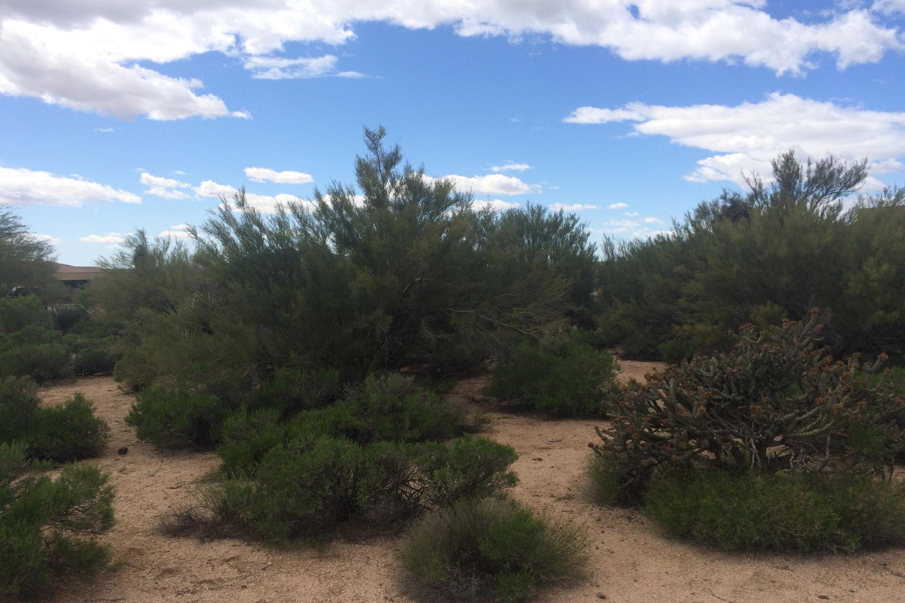 Land für Verkauf beim Fabulous easy Build-able lot in the Village of Sunrise 37875 N 98th Pl #302 Scottsdale, Arizona, 85262 Vereinigte Staaten