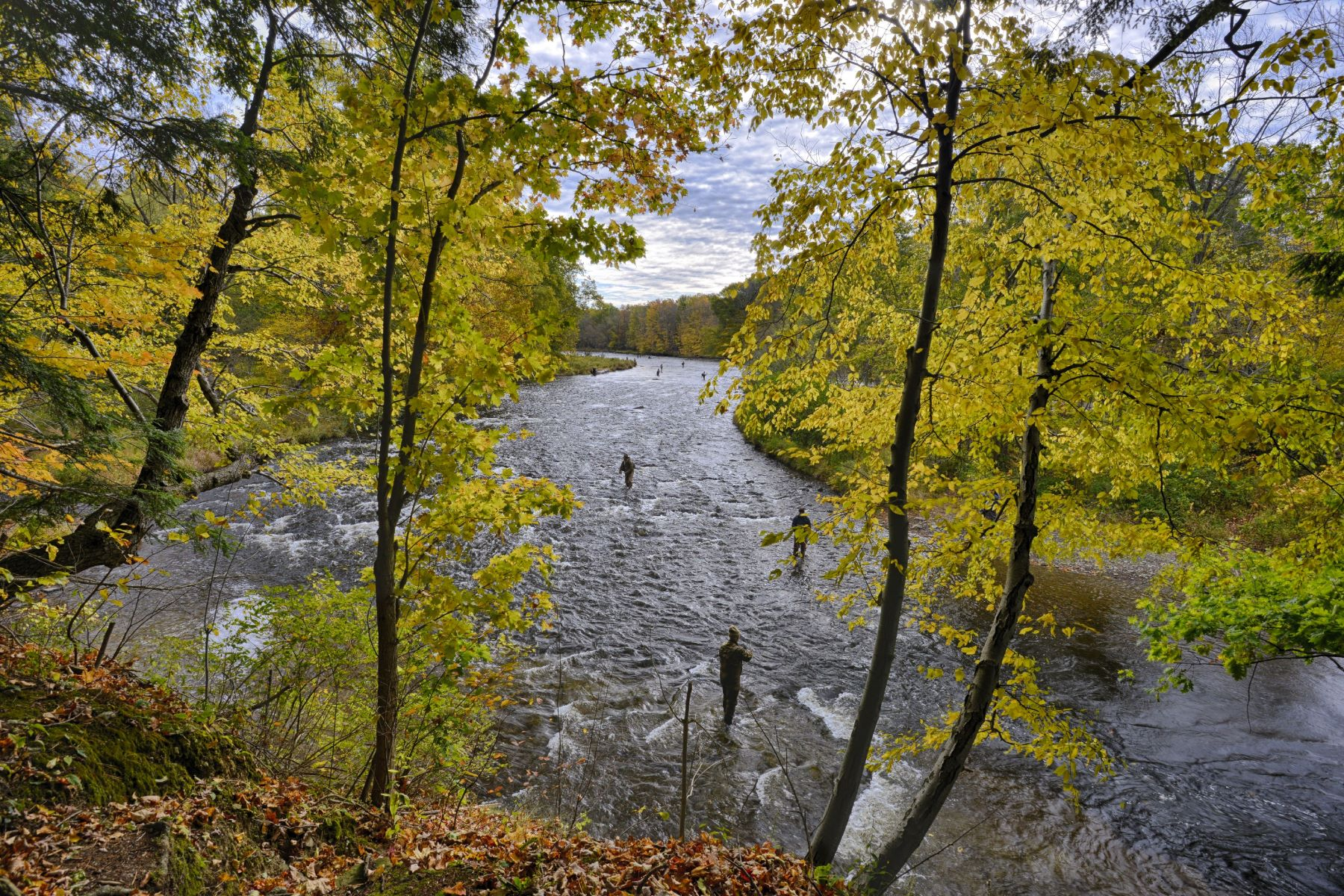 Land for Sale at Private Salmon River Frontage 0000 Co Rt 5 Richland, New York 13142 United States