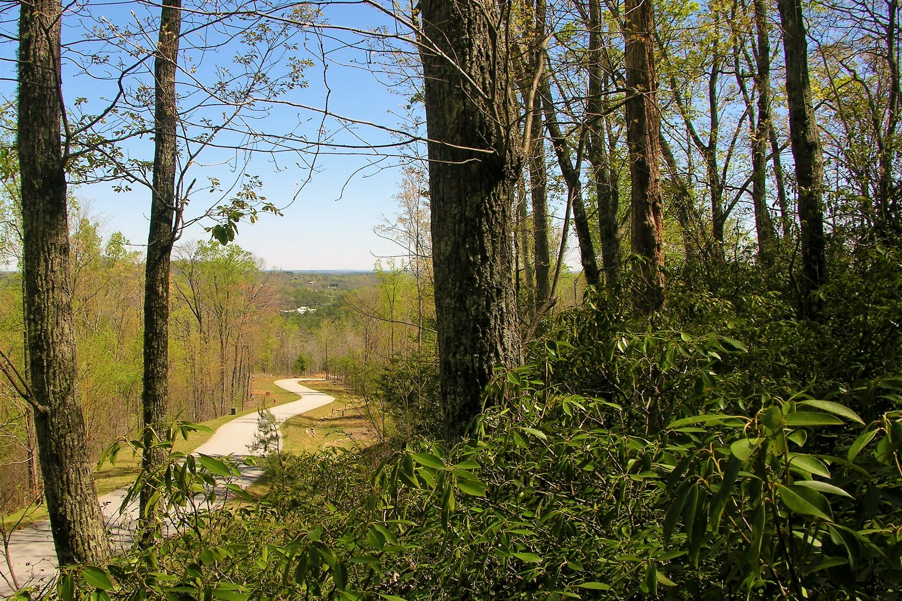 Land for Sale at 0 Bear Cliff Way Lot #55, Lake Lure, NC 55 Bear Cliff Way Lake Lure, North Carolina 28746 United States