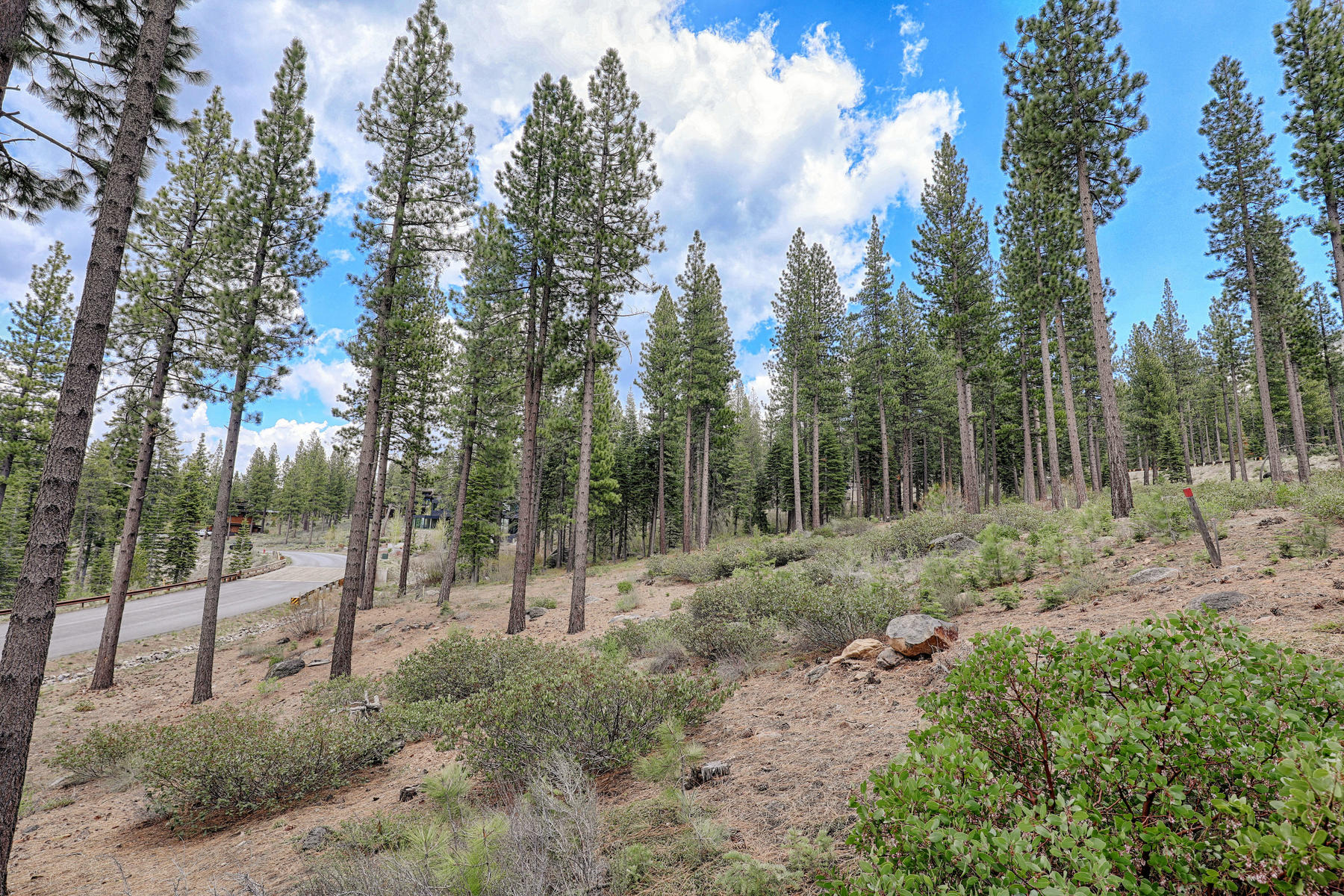 Additional photo for property listing at 8154 Villandry Drive, Truckee, CA 8154 Villandry Drive Truckee, California 96161 United States