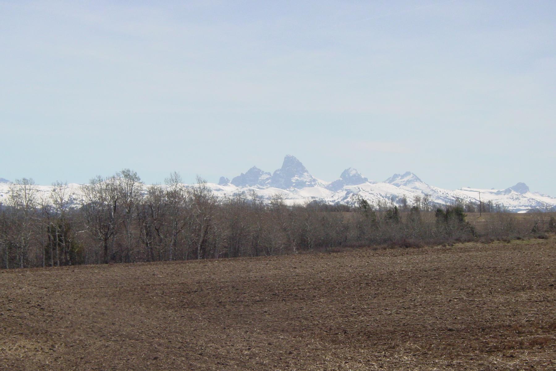 土地 のために 売買 アット Pristine 80 acre parcel near Bitch Creek 14250 N 5000 W, Felt, アイダホ, 83424 Jackson Hole, アメリカ合衆国
