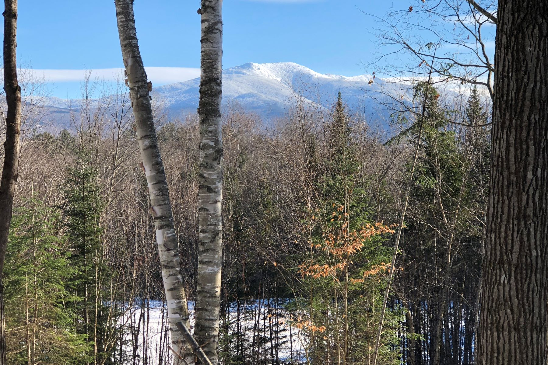 Land for Sale at Forest Rd, Franconia Forest Rd Franconia, New Hampshire 03580 United States