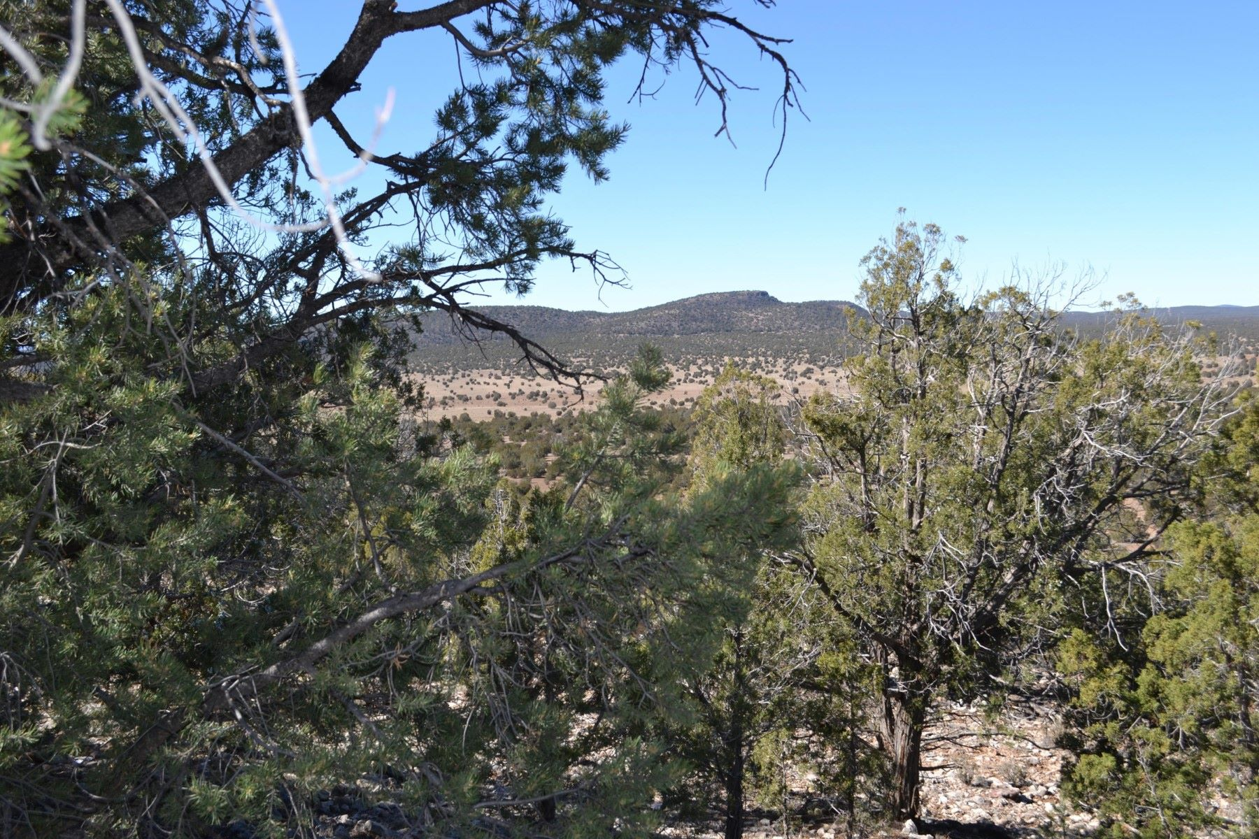 Land for Active at One of a kind Gem 301-17-095 Parcel (Apn #) Seligman, Arizona 86337 United States