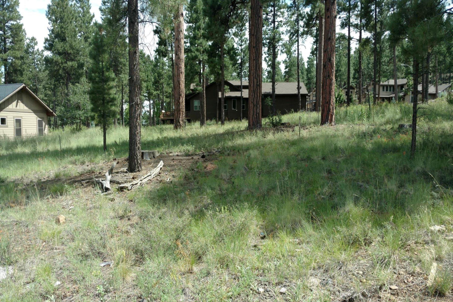 Земля для того Продажа на Corner lot in the luxury subdivision of Anasazi Ridge 2088 N Cobblestone Cir Flagstaff, Аризона, 86001 Соединенные Штаты