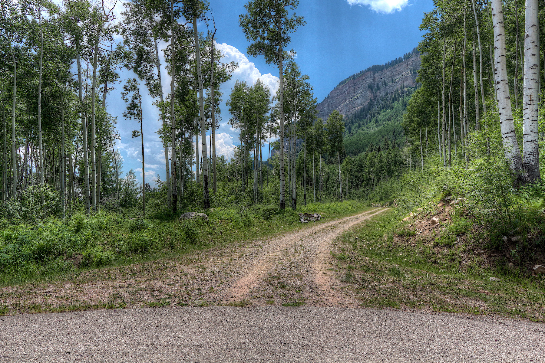 Additional photo for property listing at 311 Wilshire Drive 311 Wilshire Drive Durango, Colorado 81301 United States
