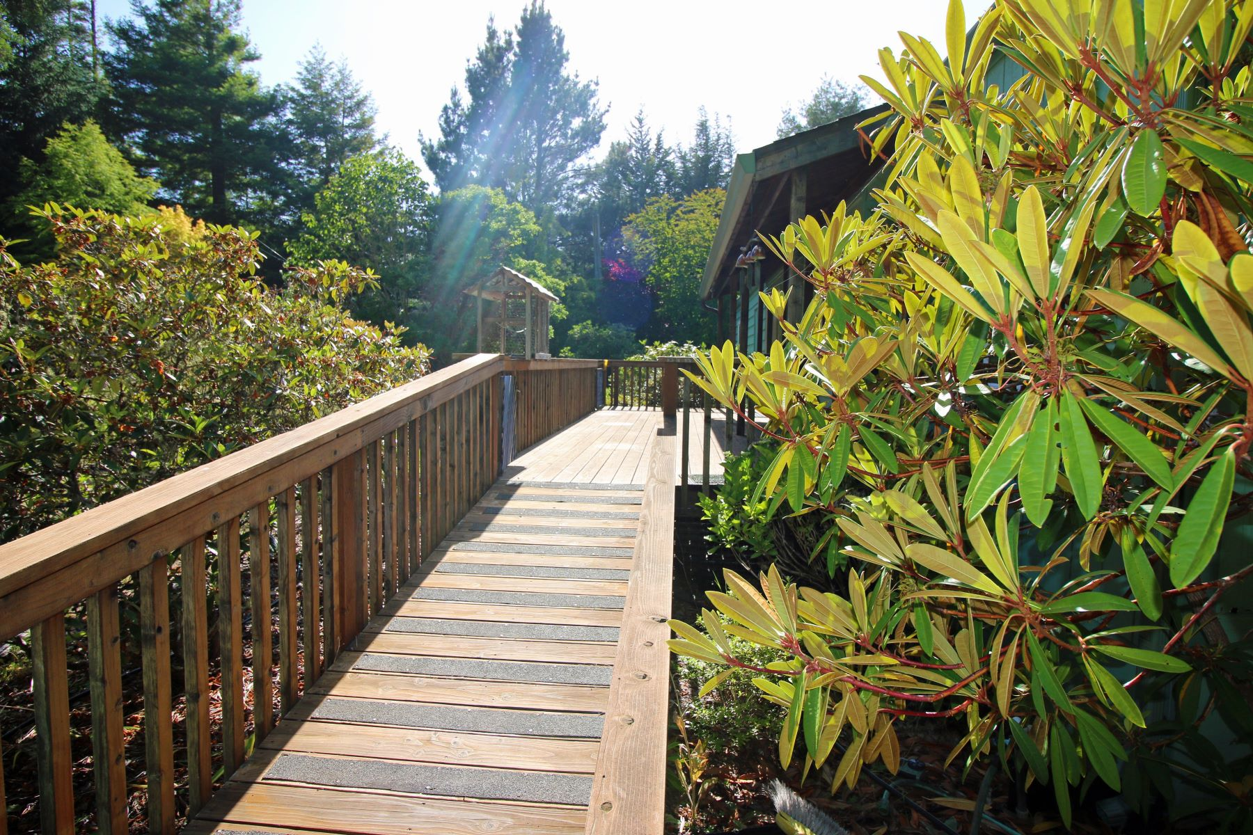 Additional photo for property listing at Natures Sanctuary 31700 Highway 20 Fort Bragg, California 95437 United States