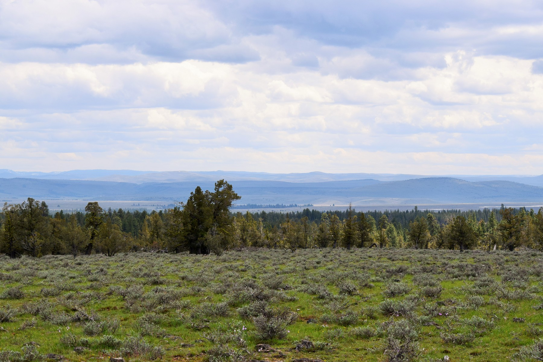 Land for Active at 0 Wolf Creek TL 200 Paulina, Oregon 97751 United States