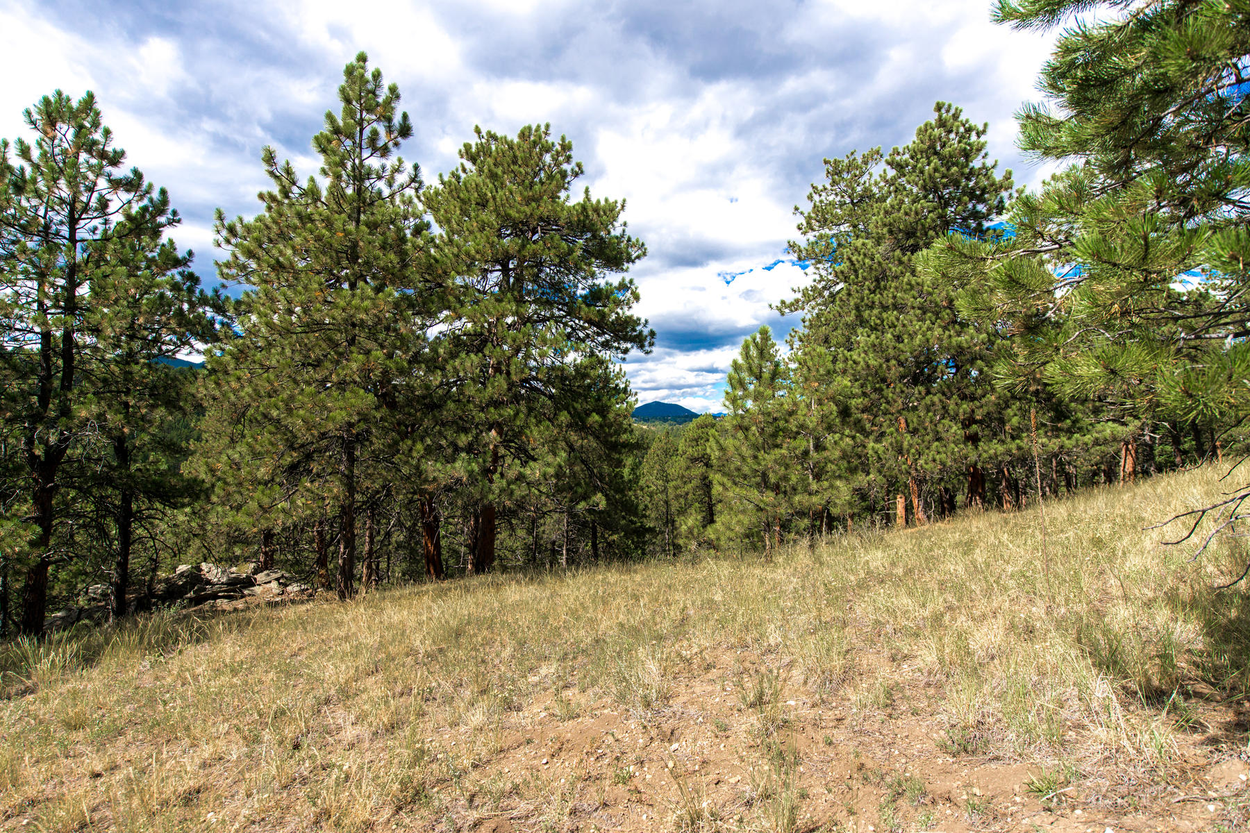 Land for Active at Prime Building Site! 1788 Kerr Gulch Road Evergreen, Colorado 80439 United States