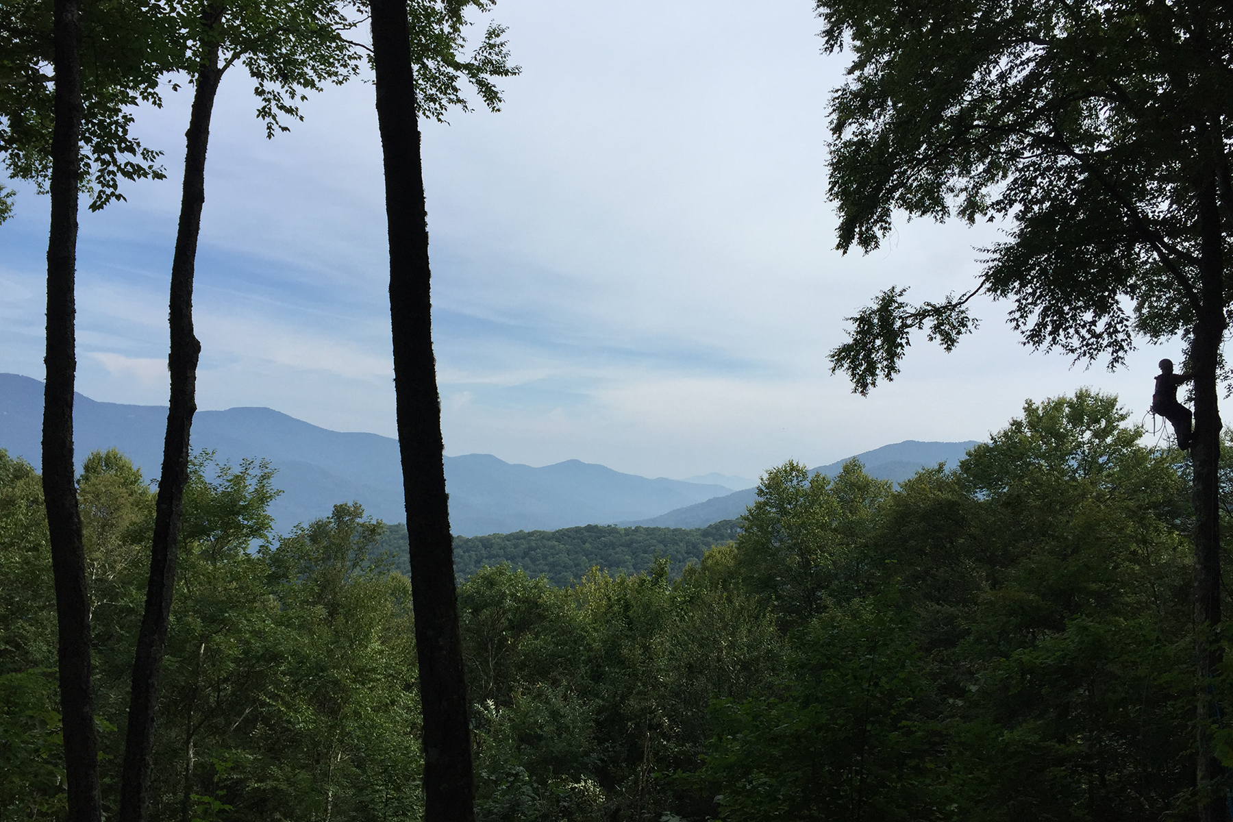 Land for Active at BALSAM MOUNTAIN PRESERVE 134 Top Notch Way , 134 Sylva, North Carolina 28779 United States