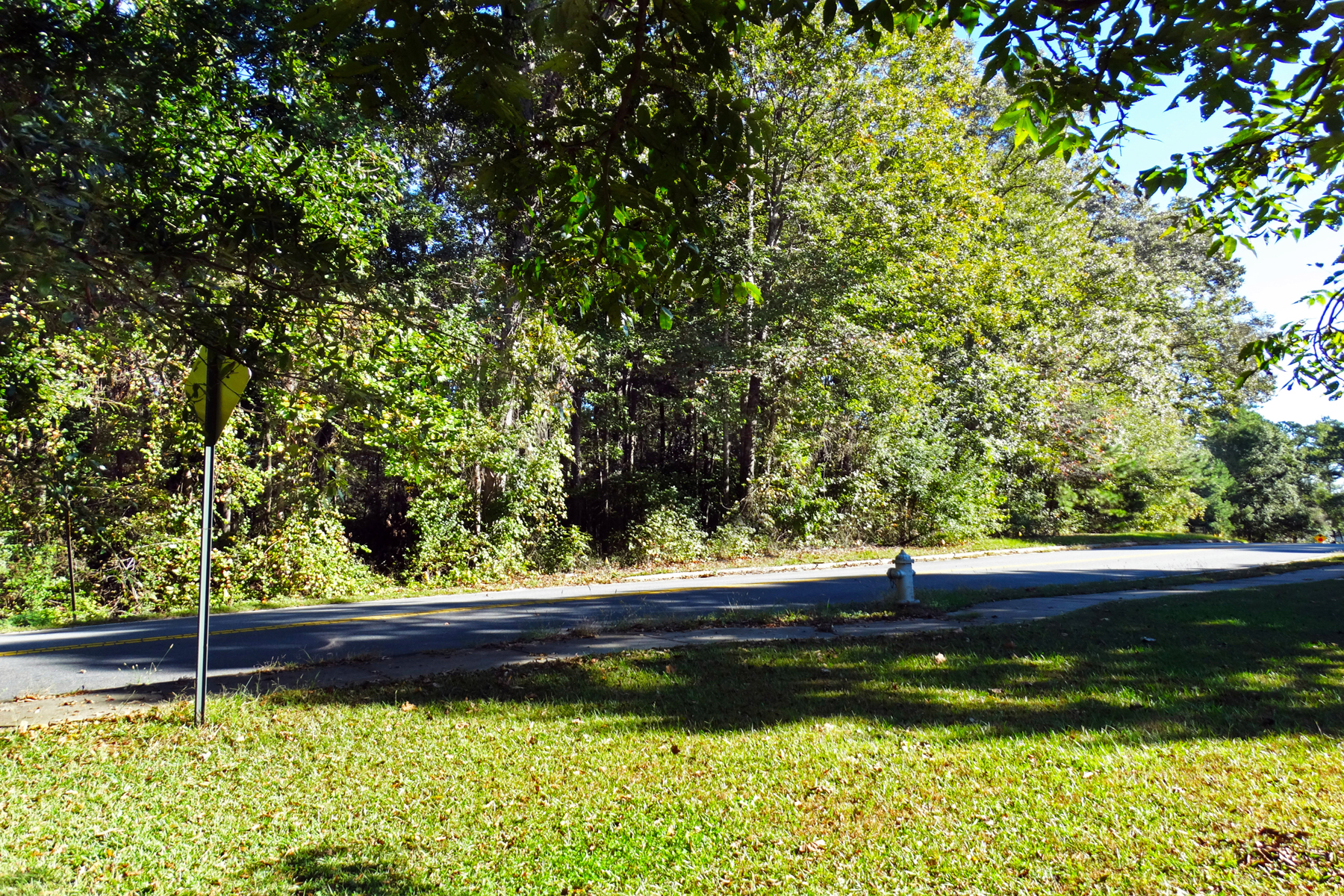 Land for Sale at 1.8+/- Acre Prime Lot Ready To Build 0 Gaydon Road Lot No. 3 Powder Springs, Georgia 30127 United States