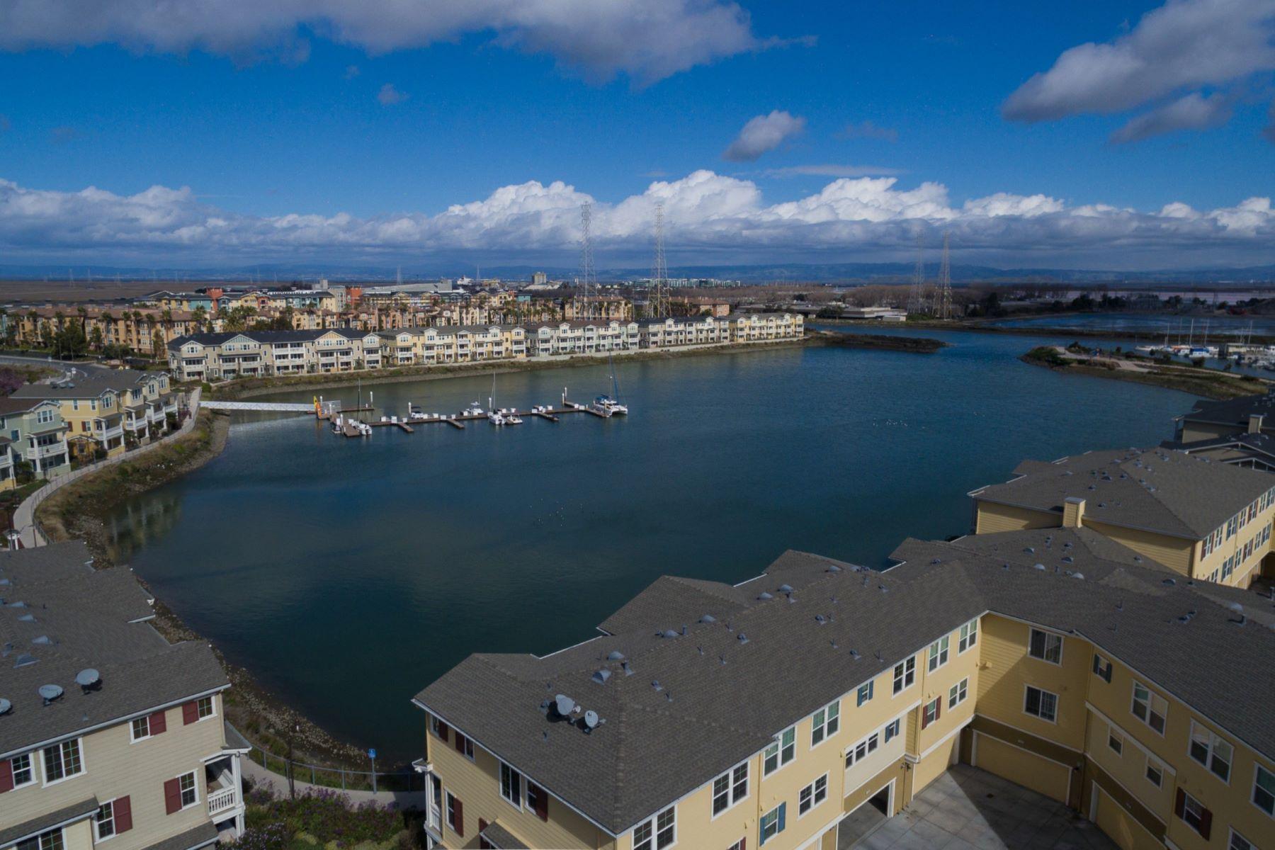 共管式独立产权公寓 为 销售 在 One Marina Condo Living 635 True Wind, #509, 雷德伍德城, 加利福尼亚州, 94063 美国