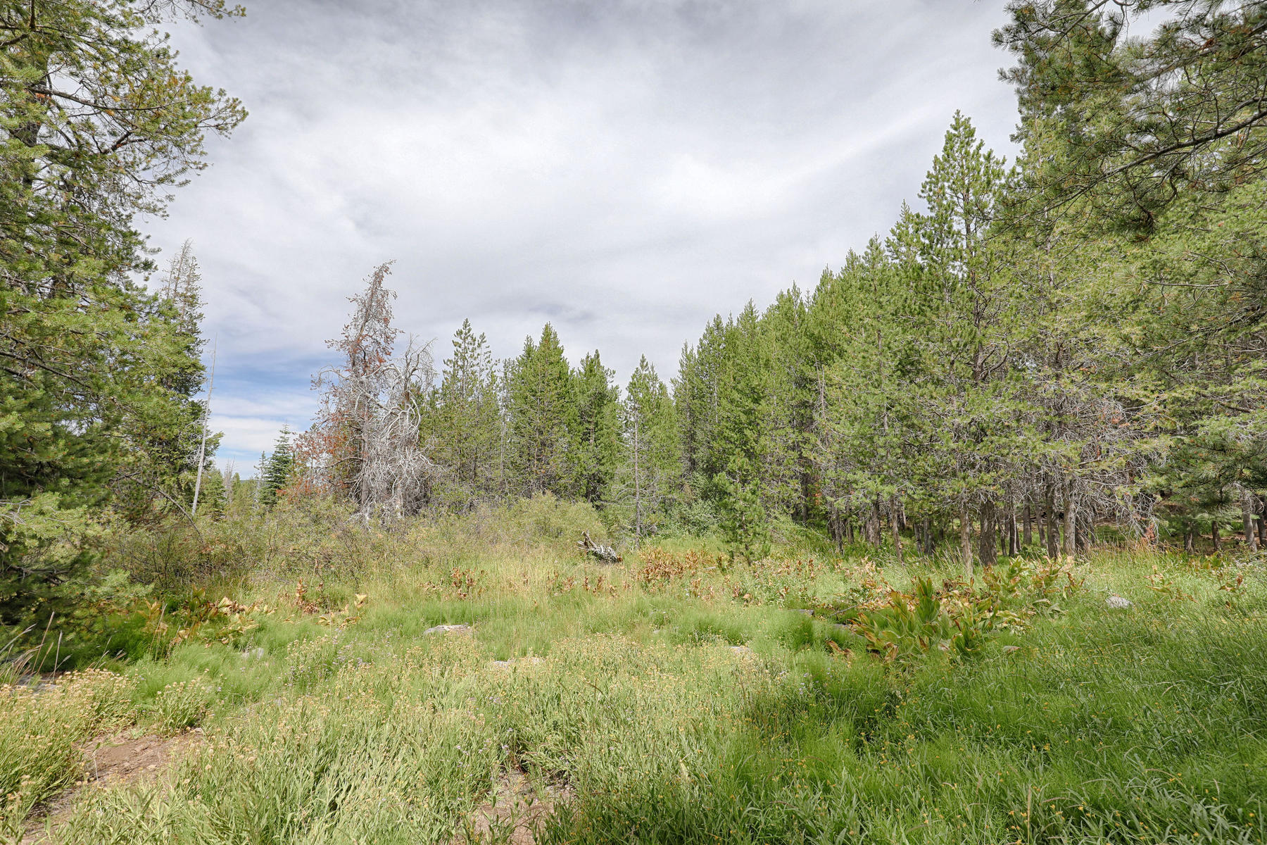Land for Active at 13799 Hillside Drive, Truckee, CA 96161 13799 Hillside Drive Truckee, California 96161 United States
