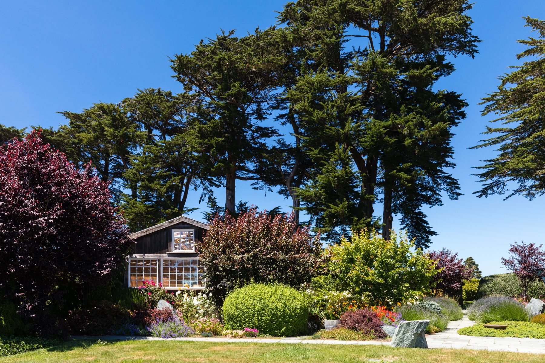 Additional photo for property listing at Navarro Vista Farm 32550 Navarro Ridge Road Albion, California 95410 Estados Unidos