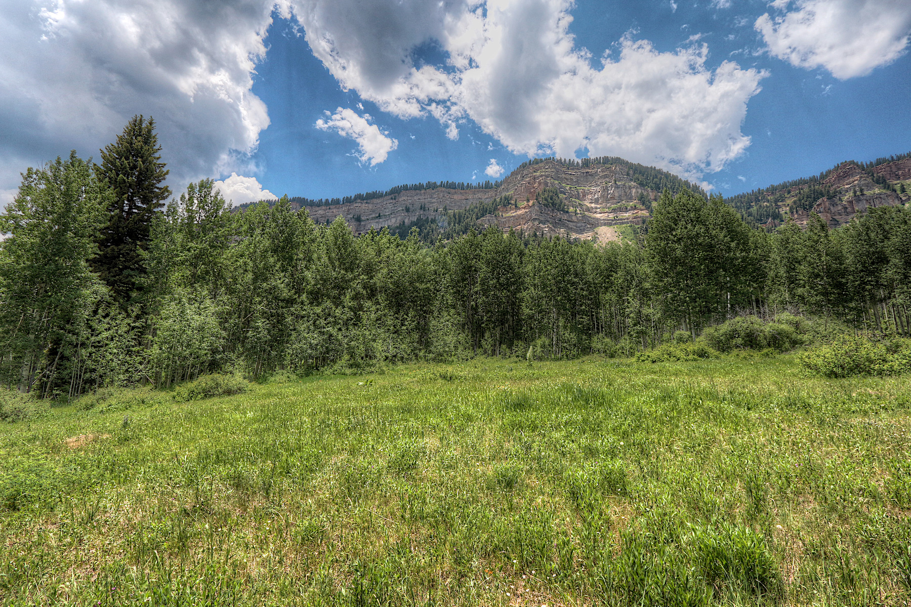 Additional photo for property listing at TBD Wilshire Drive TBD Wilshire Drive Durango, Colorado 81301 Estados Unidos