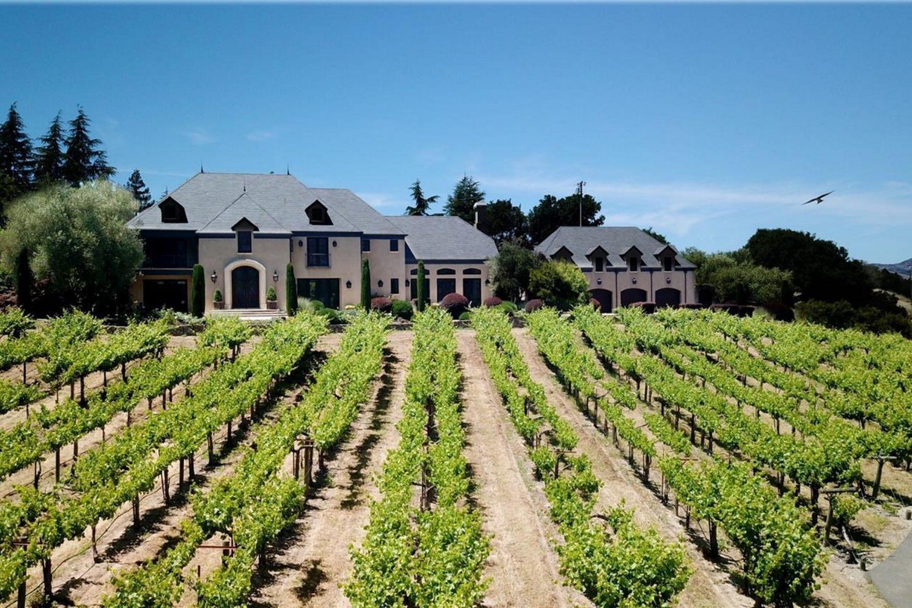 Single Family Homes 为 销售 在 Napa Valley European Inspired Vineyard Estate 1050 Olive Hill Lane 纳帕, 加利福尼亚州 94558 美国