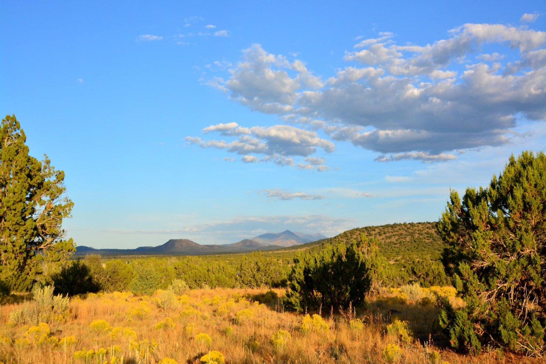 Terreno por un Venta en Williams Rural North 14477 Howard Mesa Loop LOOP Williams, Arizona 86046 Estados Unidos