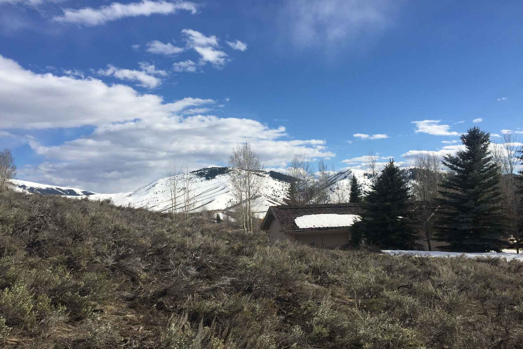 Additional photo for property listing at Sunny and Quiet 104 Fireweed Sun Valley, Idaho 83353 Estados Unidos