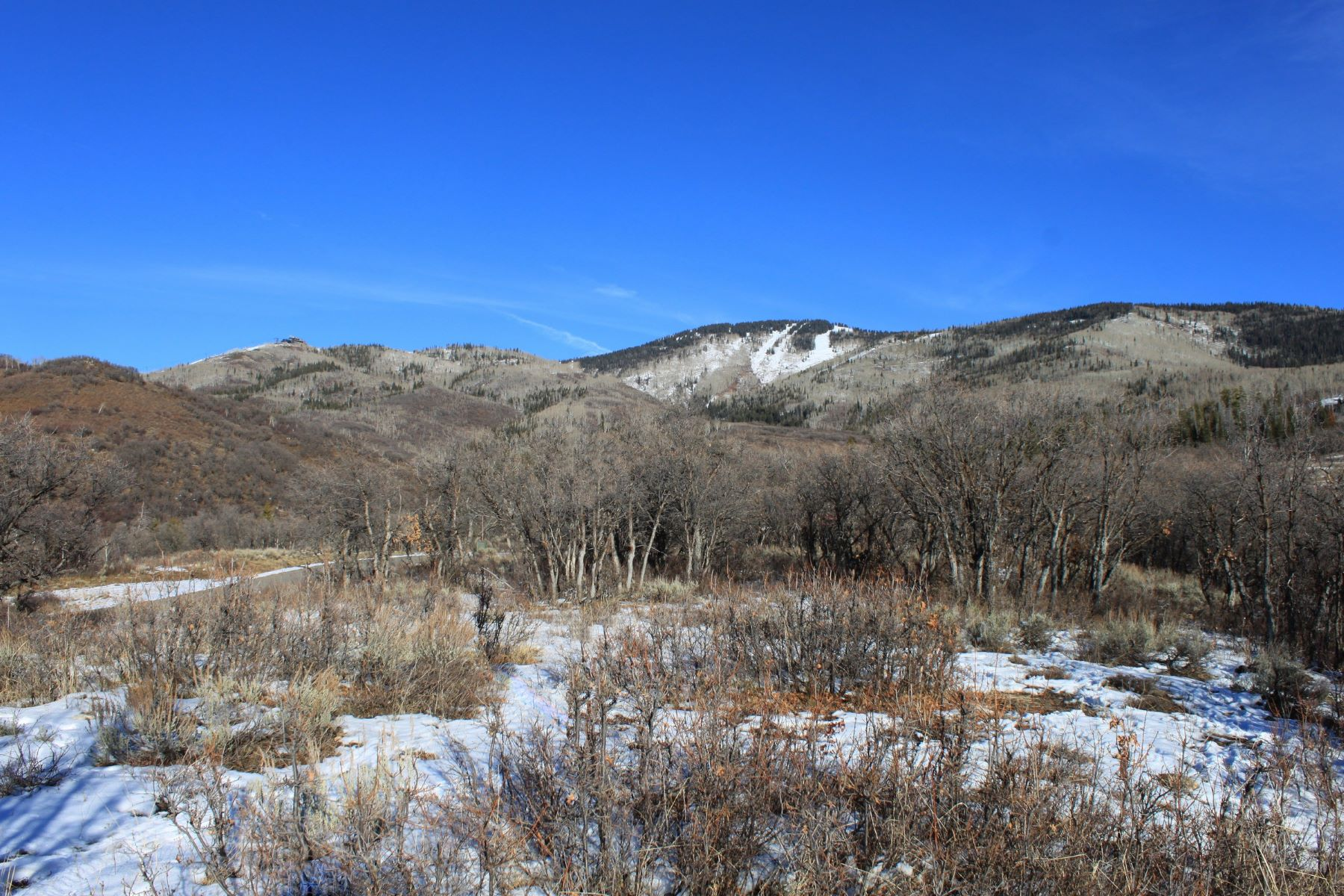 Additional photo for property listing at Alpine Mountain Ranch 33710 Meadow Creek Dr. Steamboat Springs, Colorado 80487 United States