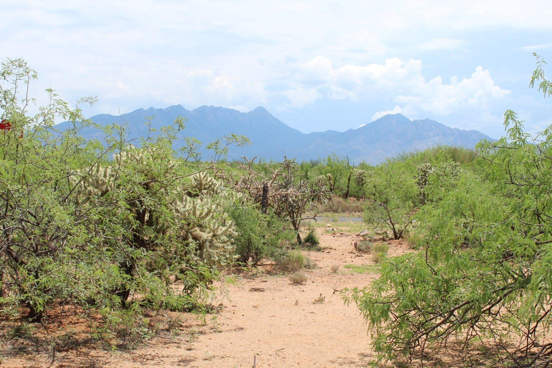 Земля для того Продажа на Beautiful 2.85 Corner Lot 375 E Corte Tierra Morena, Green Valley, Аризона, 85614 Соединенные Штаты