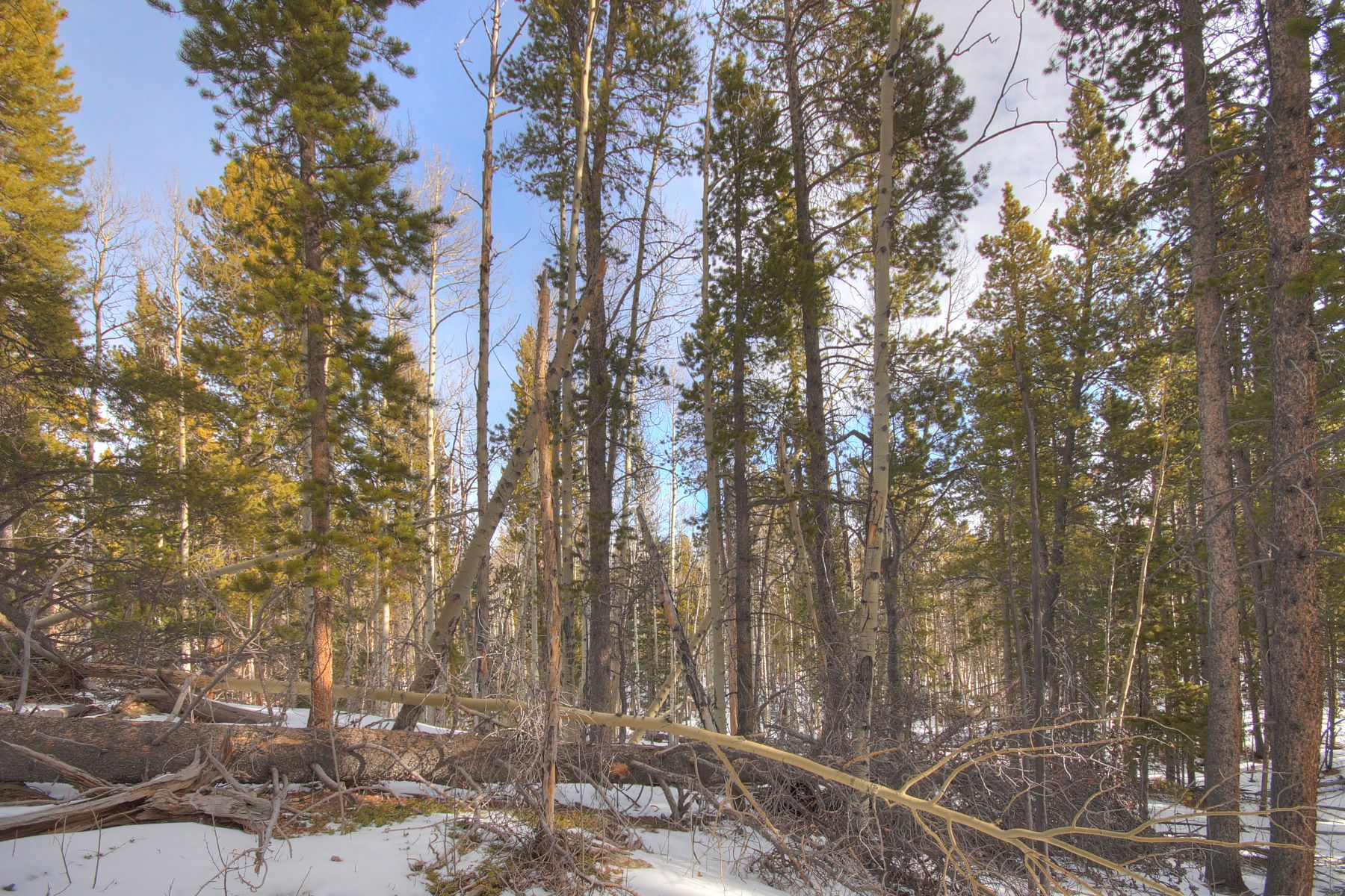 Additional photo for property listing at Glacier Ridge 0 Polaris Road Alma, Colorado 80420 United States
