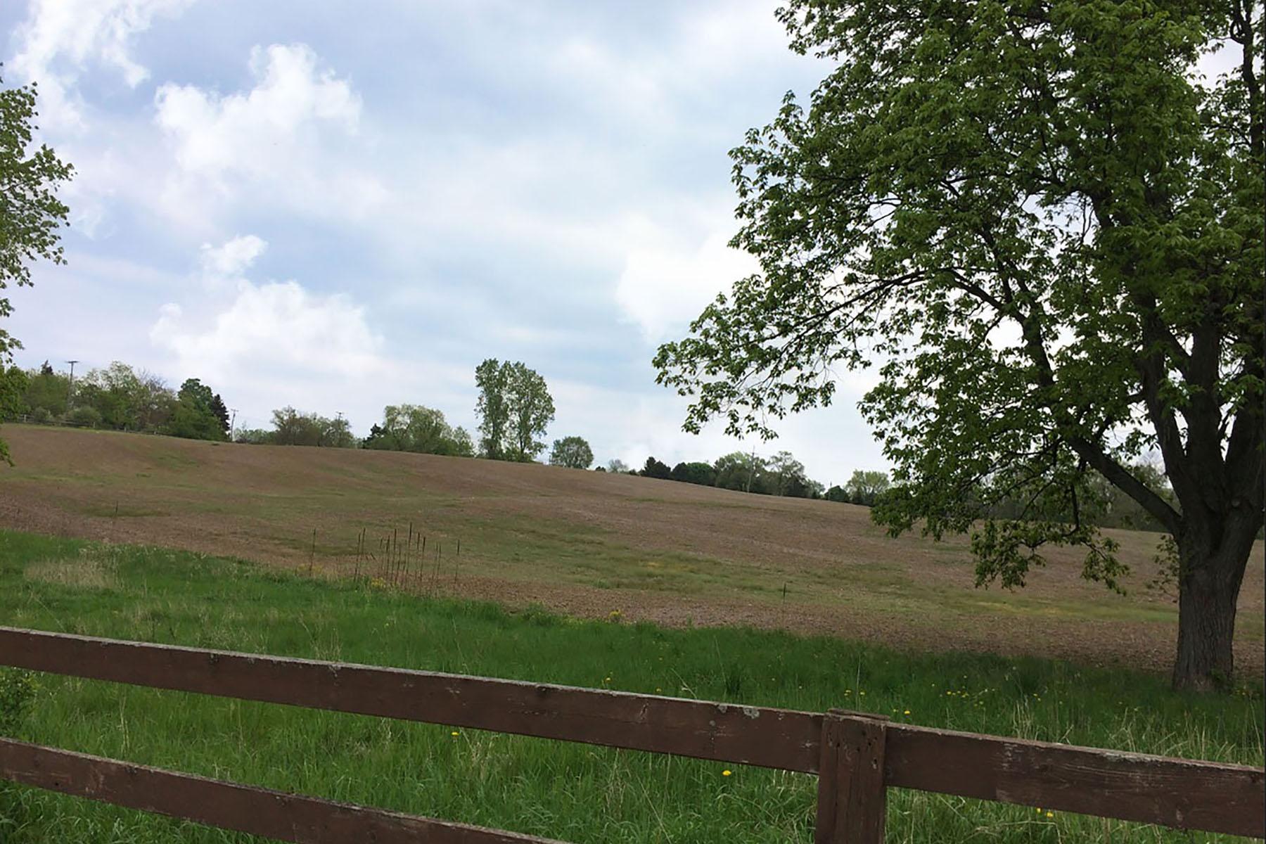 Terrain pour l Vente à Lyon Township 20925B Currie Road Northville, Michigan, 48167 États-Unis