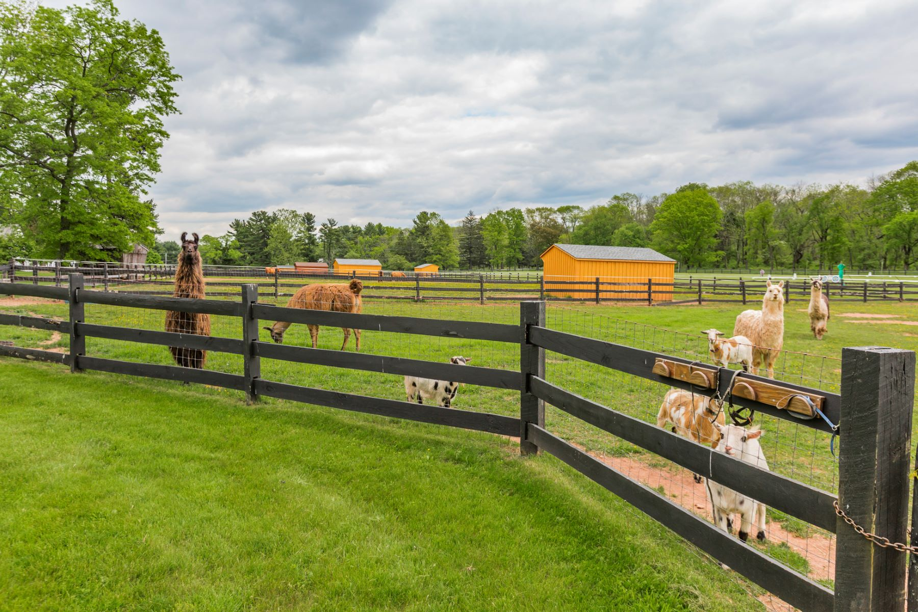 Additional photo for property listing at Historic Farm Reimagined for the Modern Equestrian - Hopewell Township 266 Province Line Road, Skillman, 新澤西州 08558 美國