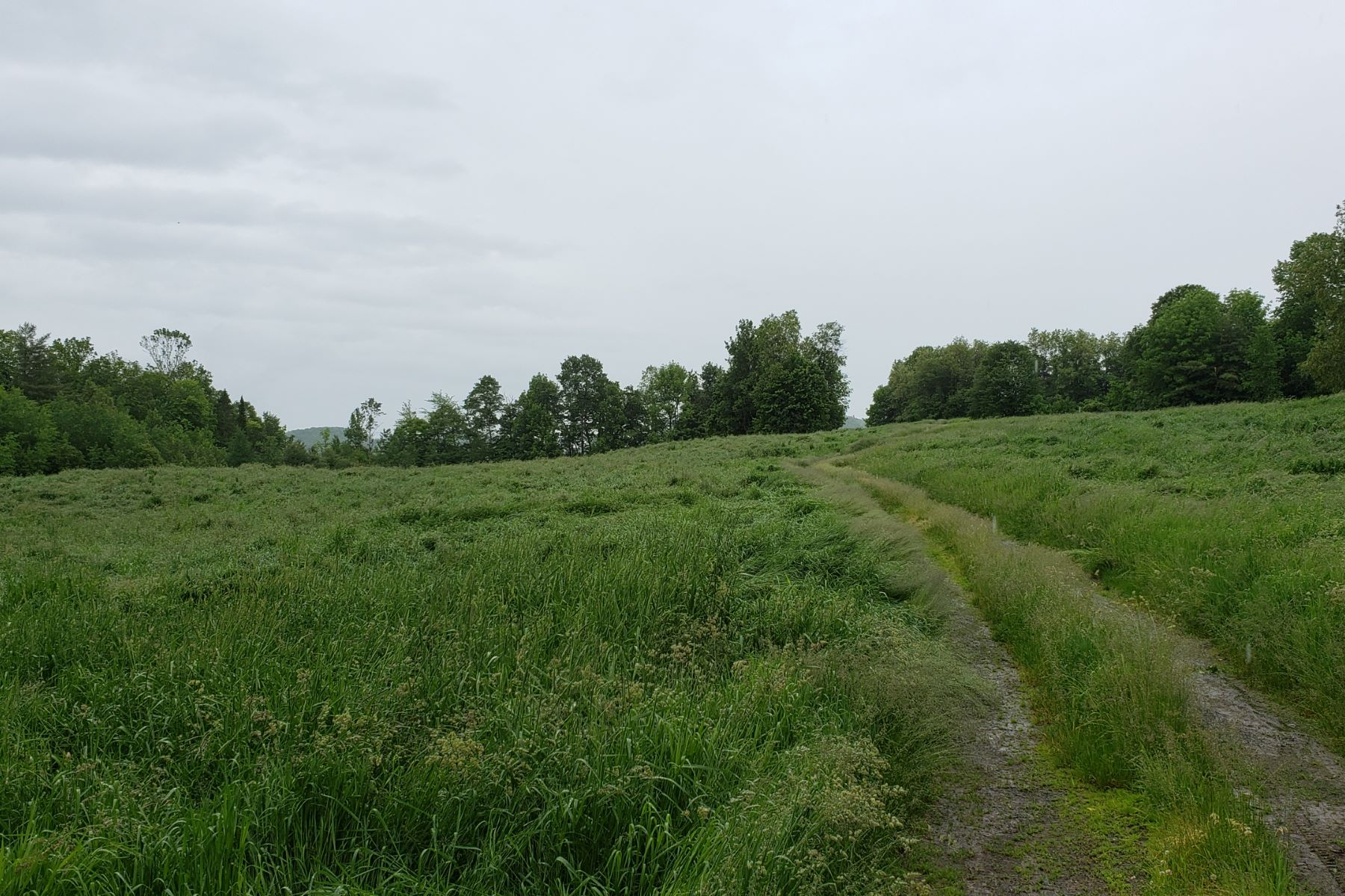 Land for Sale at 48 Acres in Bradford 00 South Road Bradford, Vermont 05033 United States
