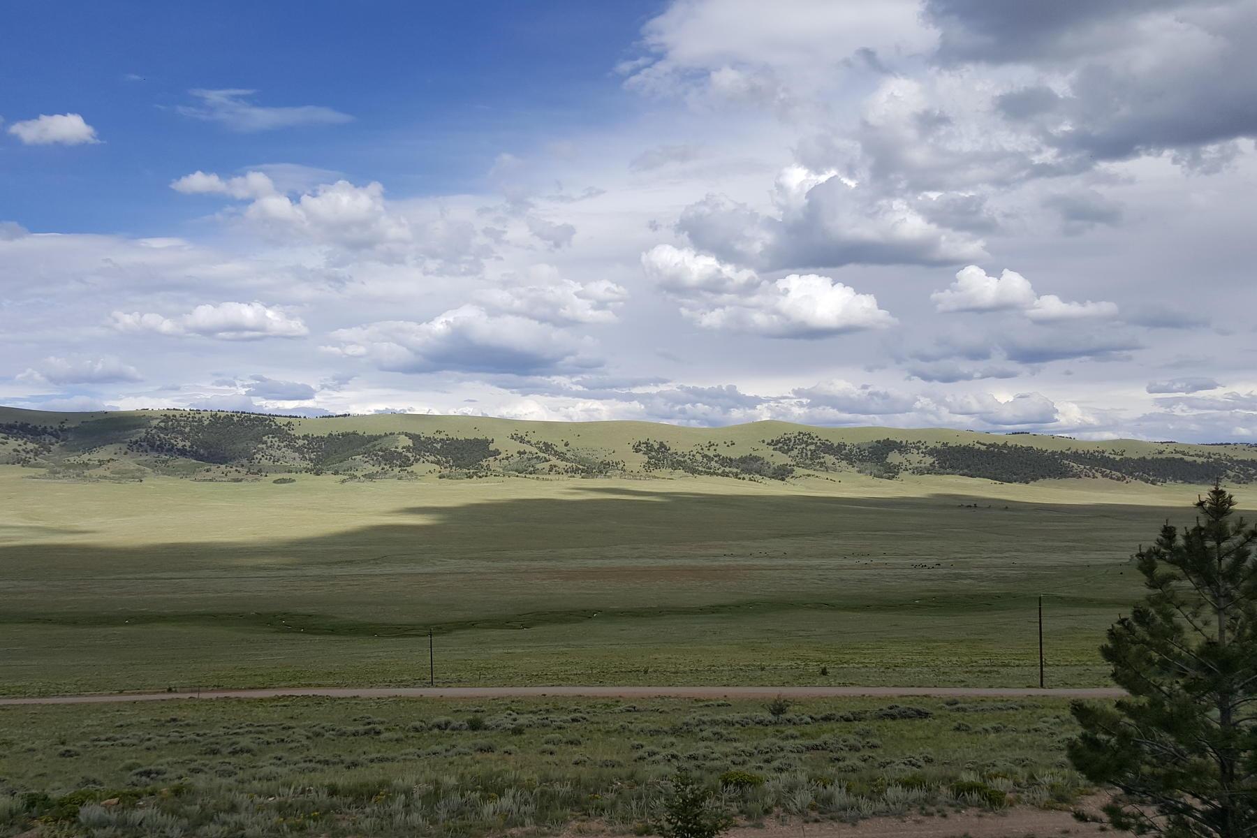 Terreno por un Venta en Big Views of 5 Acres with Fishing Access Lot 488 Redhill Road, Fairplay, Colorado 80440 Estados Unidos