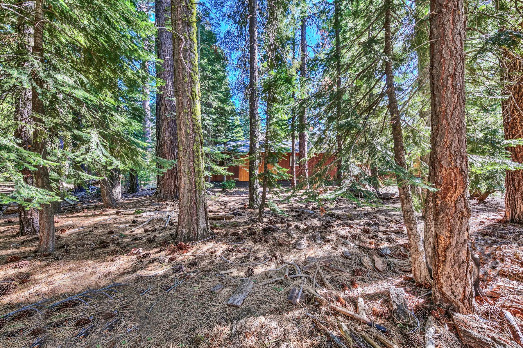 Additional photo for property listing at Level Lot on the West Shore 7137 4th Avenue Tahoma, 加利福尼亚州 96142 美国