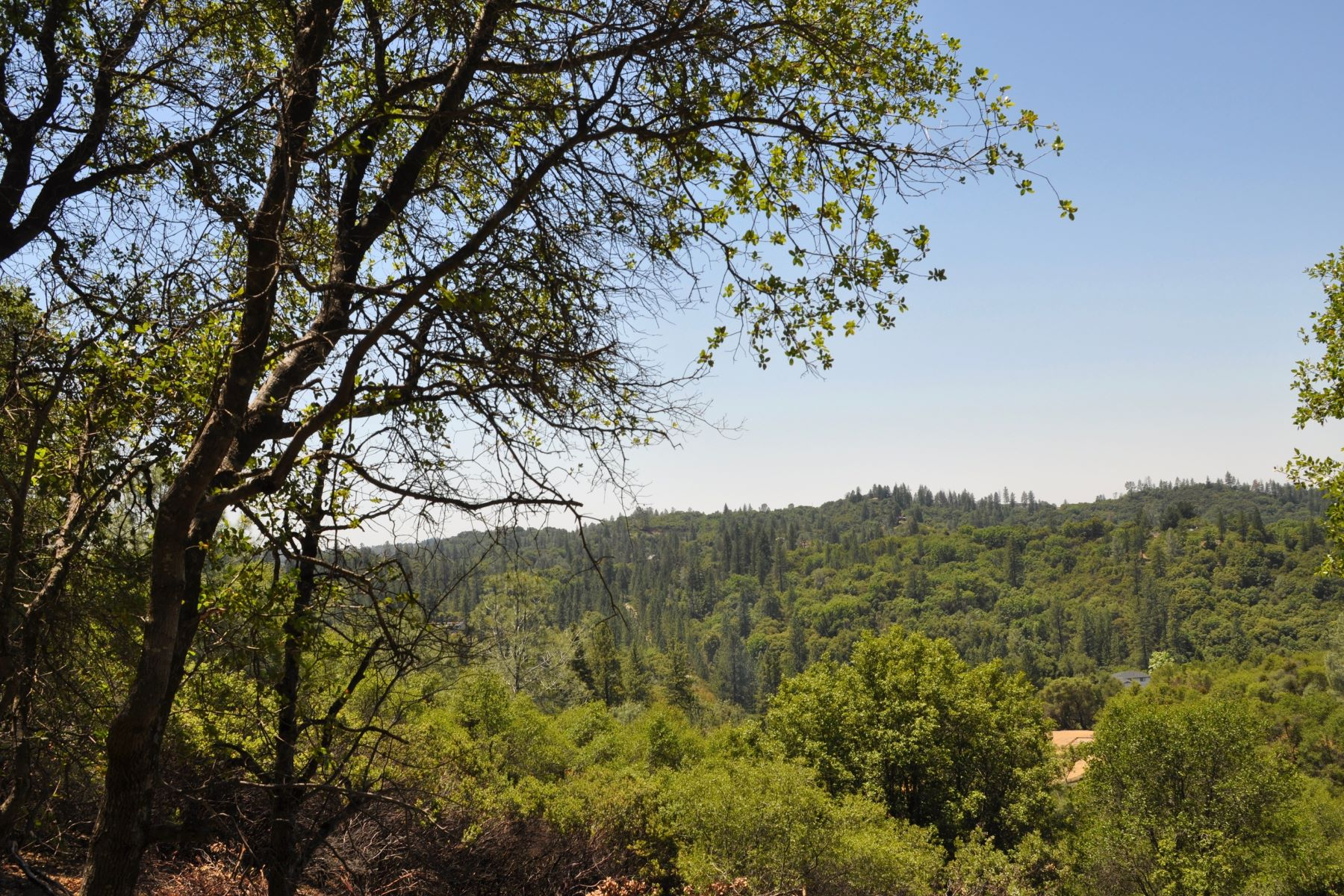 Land for Sale at 14190 Shake Ridge Road Sutter Creek, California 95685 United States