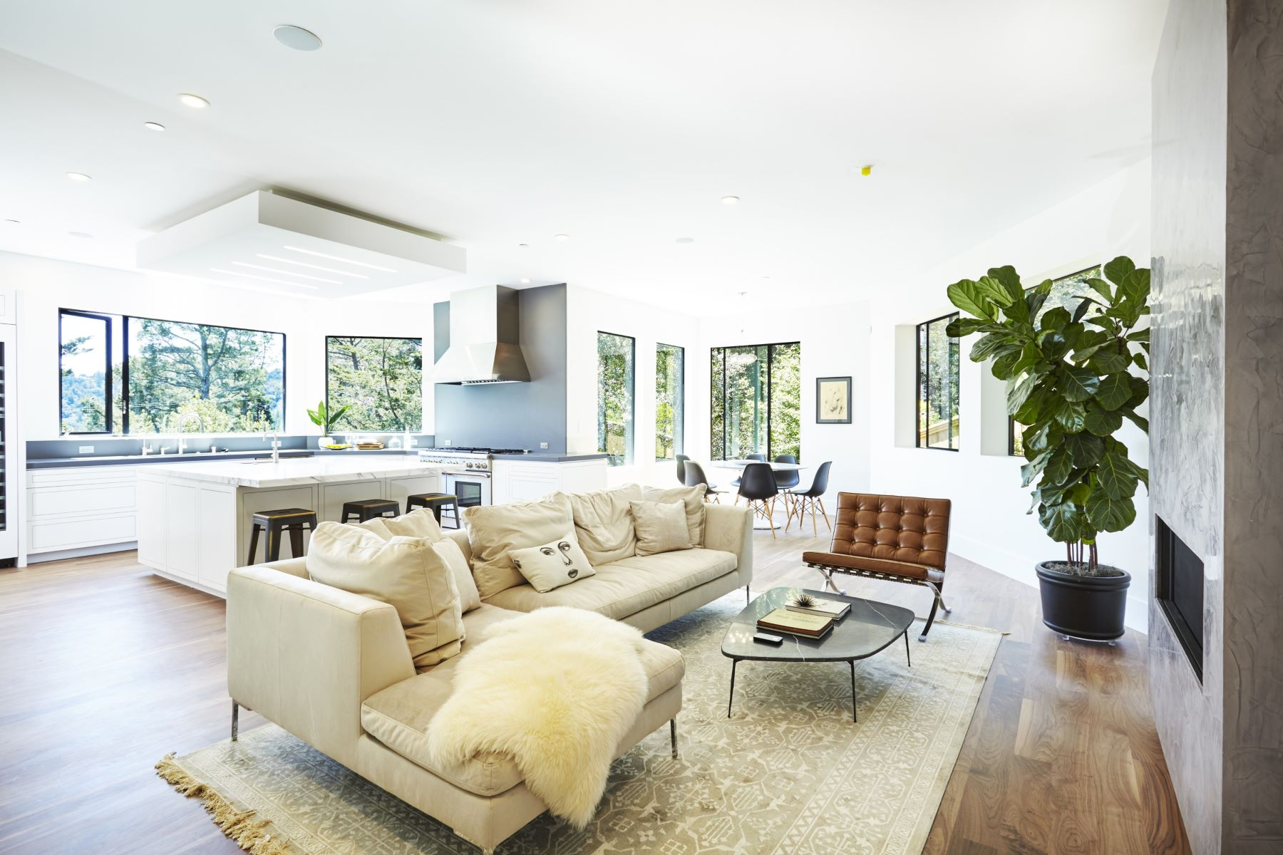 Additional photo for property listing at New Construction in Mill Valley - a Modern Masterpiece 575 Summit Avenue Mill Valley, 加利福尼亞州 94941 美國