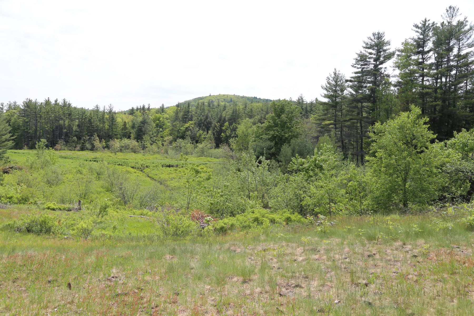 Land for Sale at Scenic Country Property 39 Felch Rd Sutton, New Hampshire 03260 United States