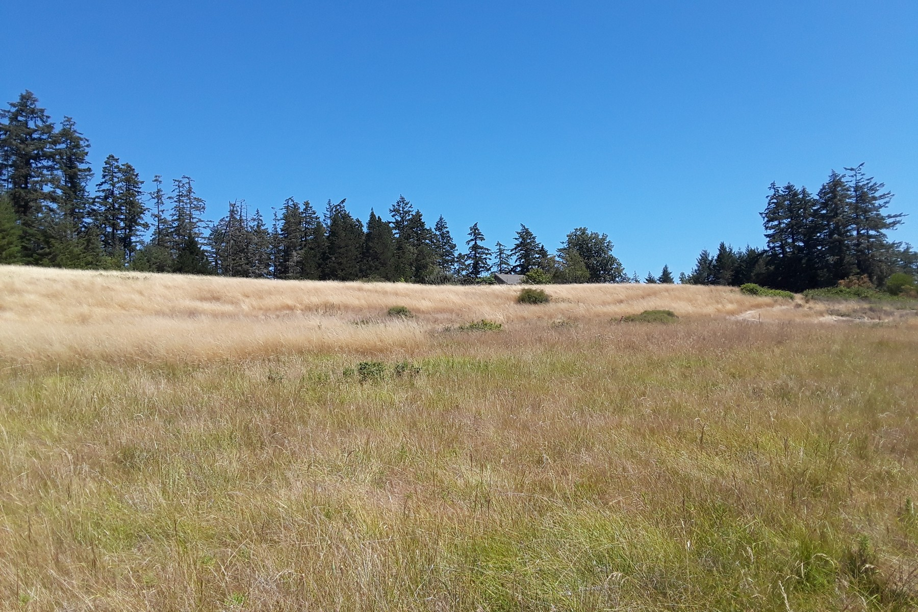 Land for Sale at Two Open And Sunny Parcels on San Juan Island XXX Egg Lake Road Friday Harbor, Washington 98250 United States