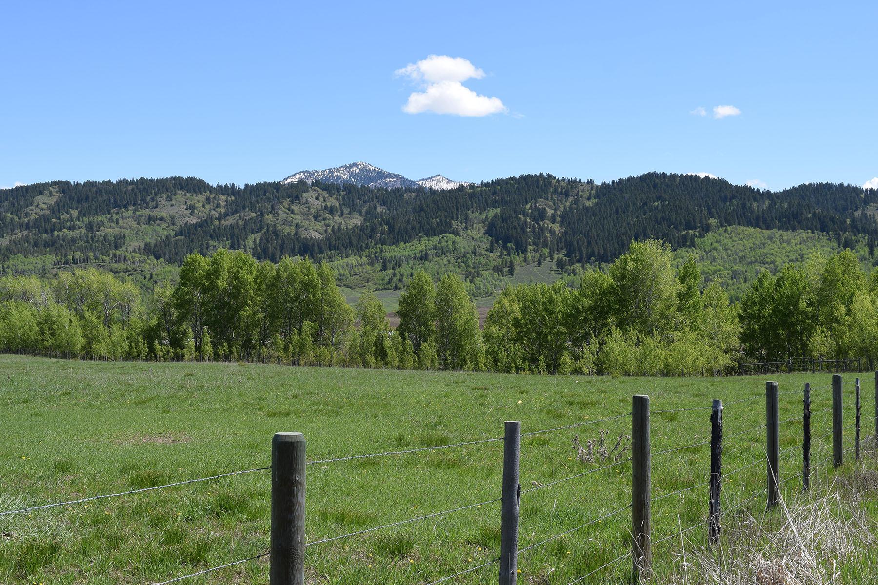 Terreno por un Venta en Elevated Private Building Site in Alpine LOT 10 BLACK MOUNTAIN LANE, Alpine, Wyoming 83128 Estados Unidos
