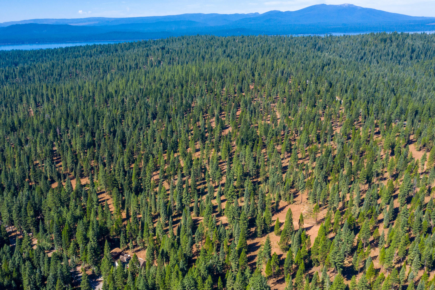 Additional photo for property listing at 000 Clifford Drive, Lake Almanor, CA 000 Clifford Drive Lake Almanor, California 96137 Estados Unidos