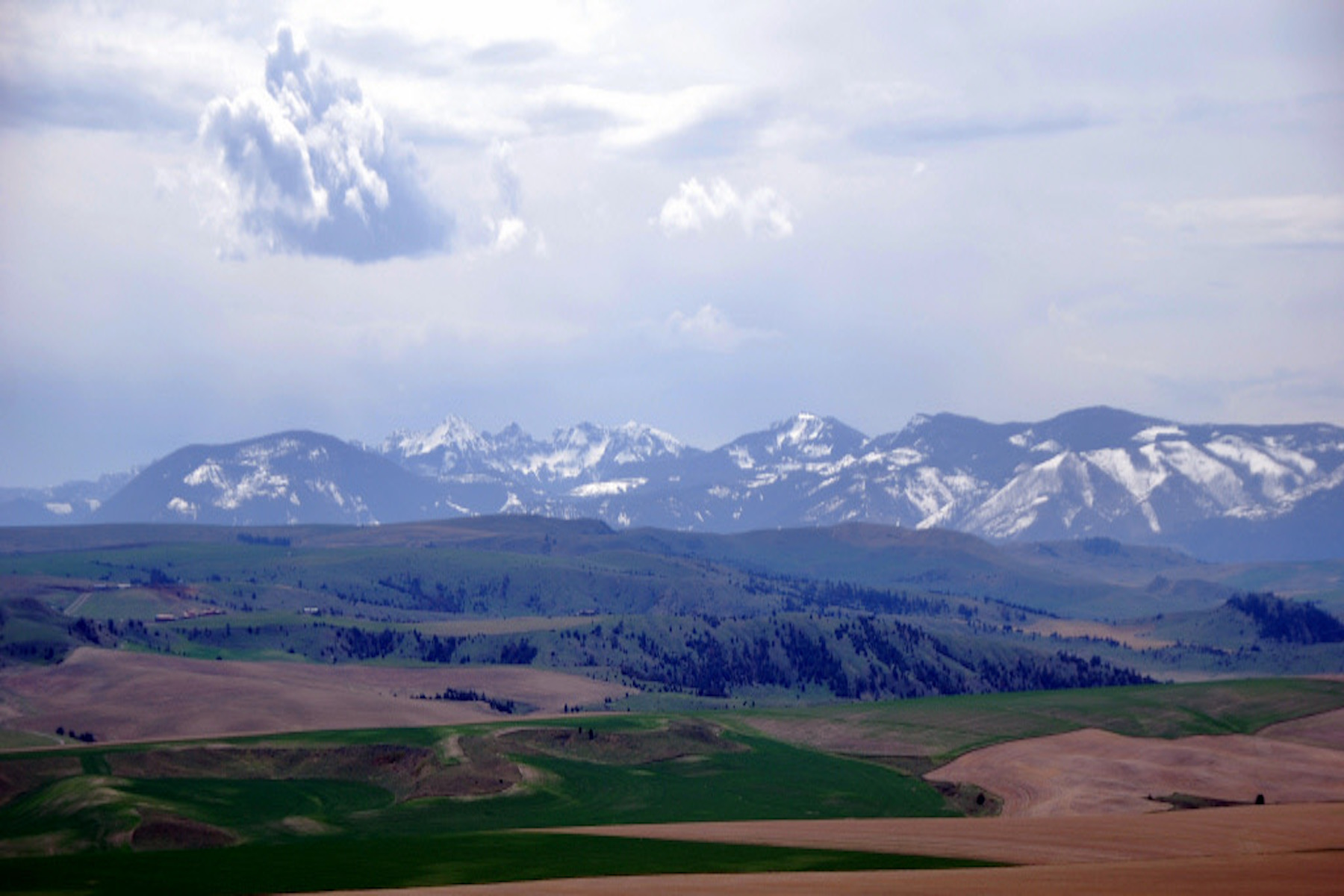 Land for Sale at 1, 2, 3, 4, & 5 Vincent Road 1, 2, 3, 4, & 5 Vincent Rd, COS 2241A Manhattan, Montana, 59741 United States