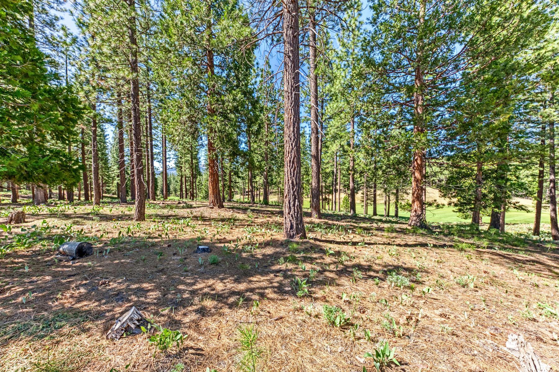 Additional photo for property listing at 178 Bird of Prey Lane, Portola, CA 96122 178 Bird of Prey Lane Portola, California 96122 Estados Unidos