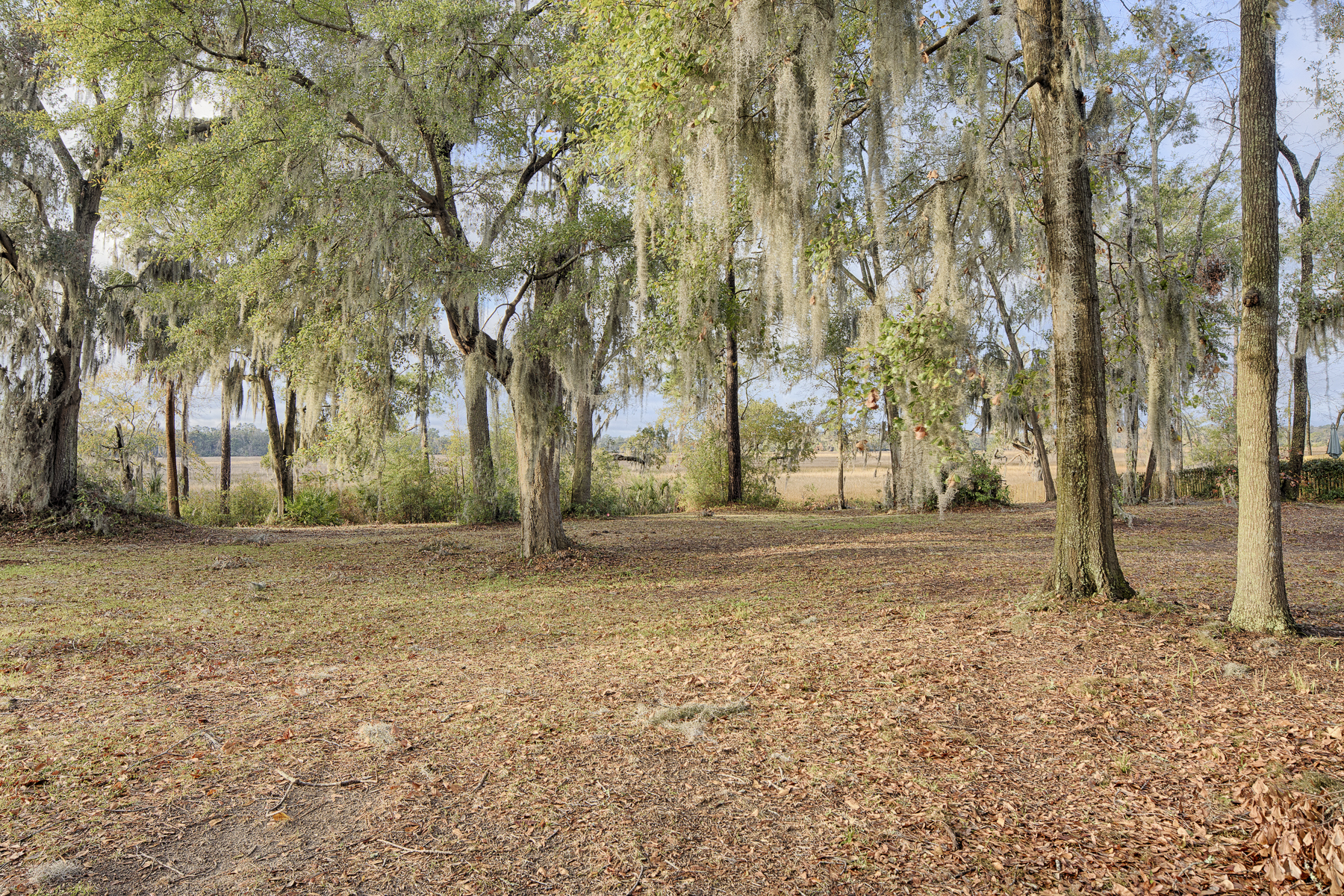 Additional photo for property listing at 222 John Wesley Way  Savannah, Georgia 31404 United States