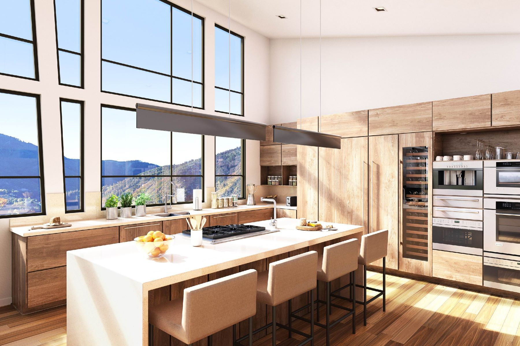 Additional photo for property listing at One Aspen TBD S. Aspen Street #10 Aspen, Colorado 81611 United States