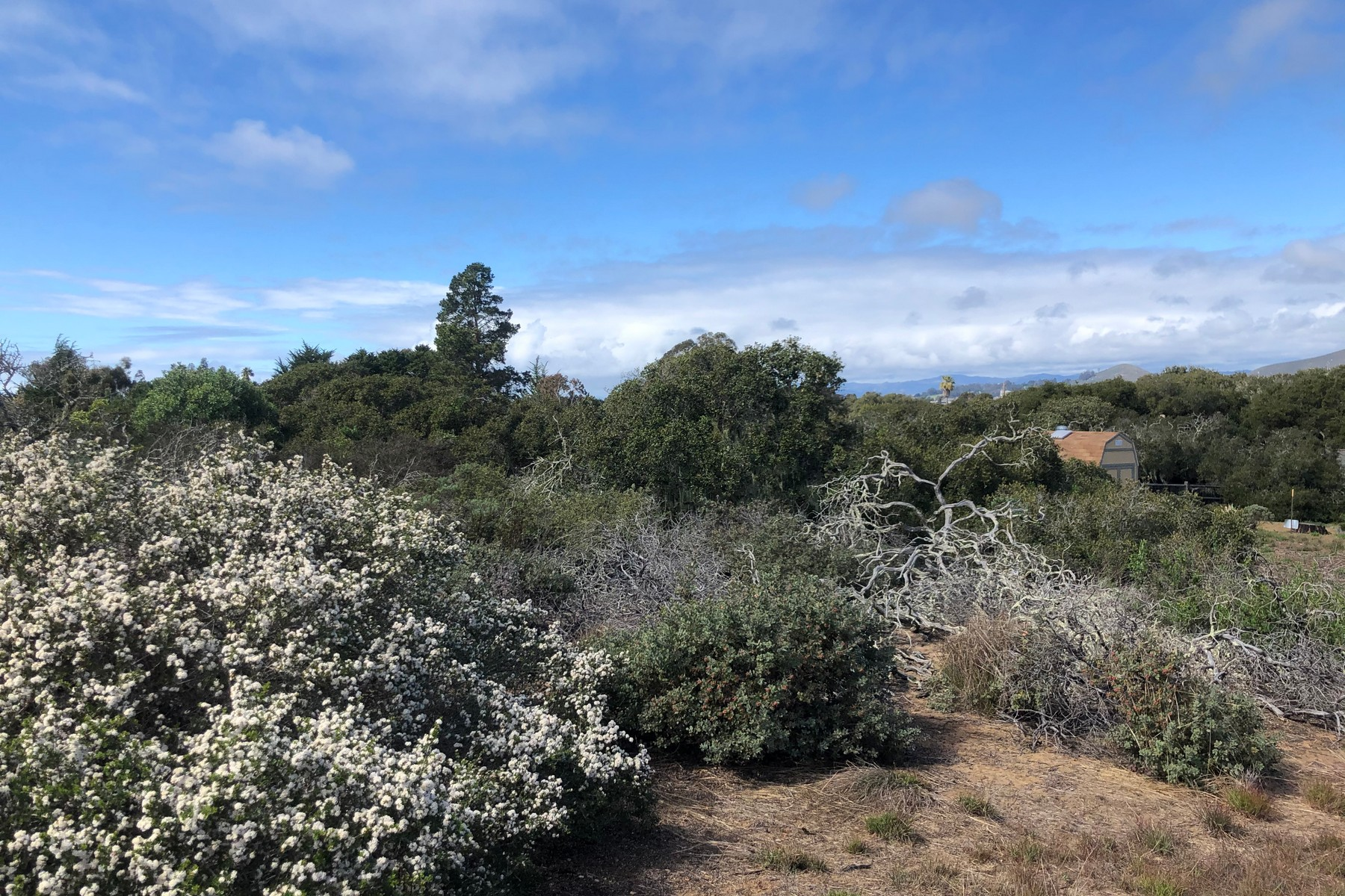 Land for Sale at 1-Acre Coastal Lot 2049 Andre Ave. Los Osos, California 93402 United States
